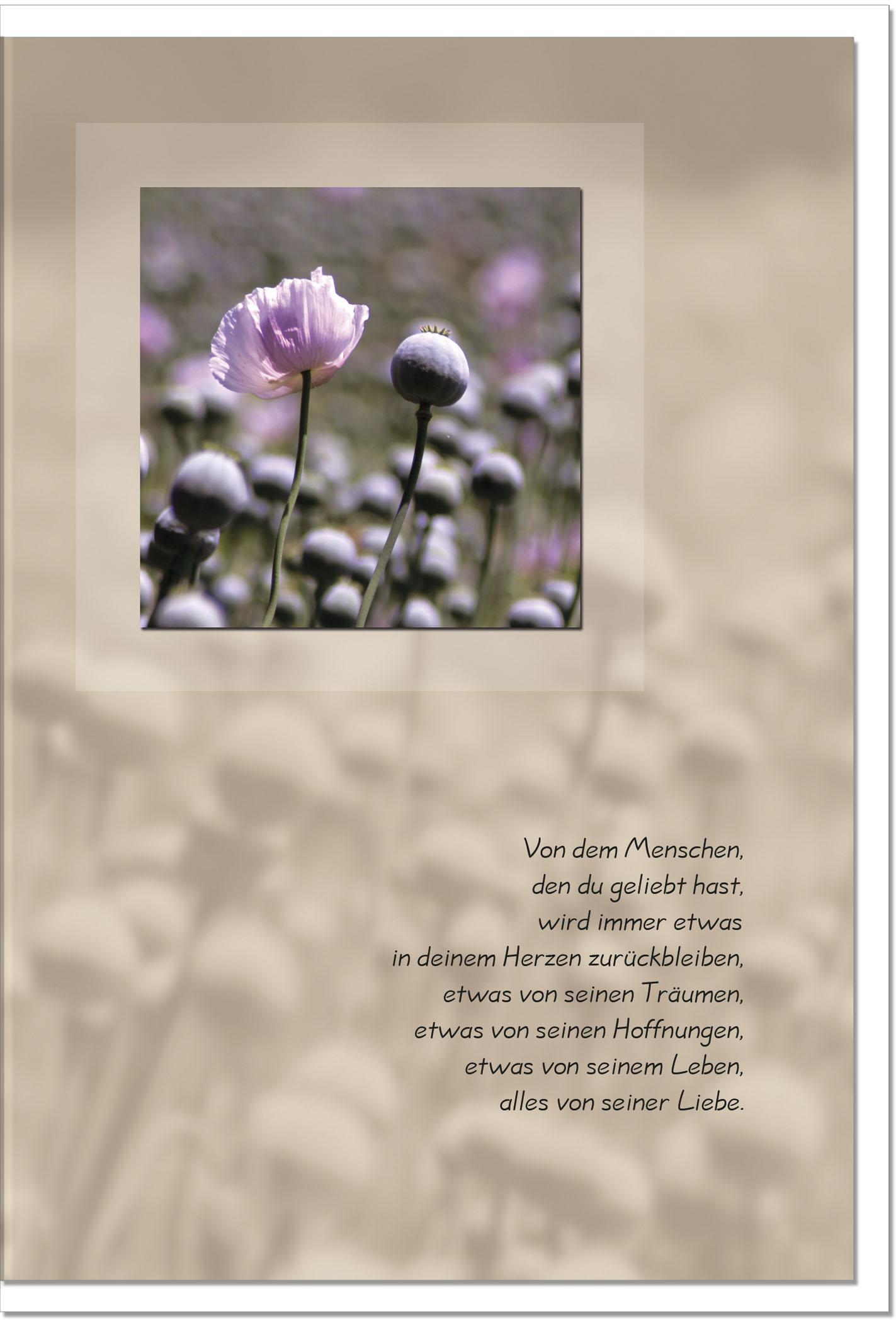 Trauerkarte DIE LIEBE BLEIBT | Rosa Mohnblumen | metALUm #00016