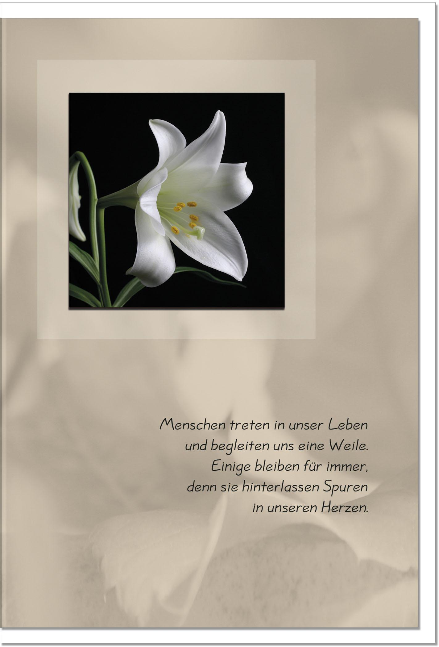 Trauerkarte SPUREN EINES LEBENS | Weiße Lilie | metALUm #00022