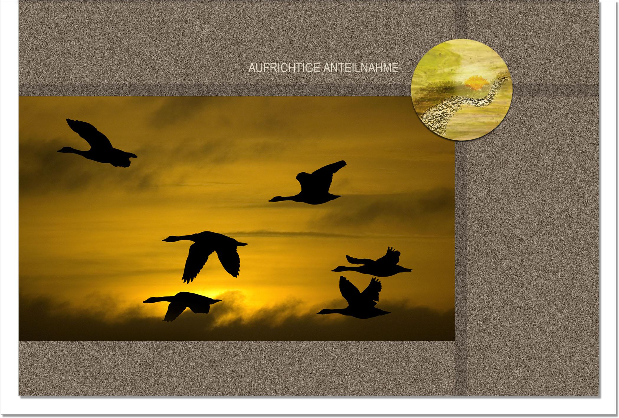 Trauerkarte ABSCHIED | Wildgänse im Sonnenuntergang | metALUm #00047
