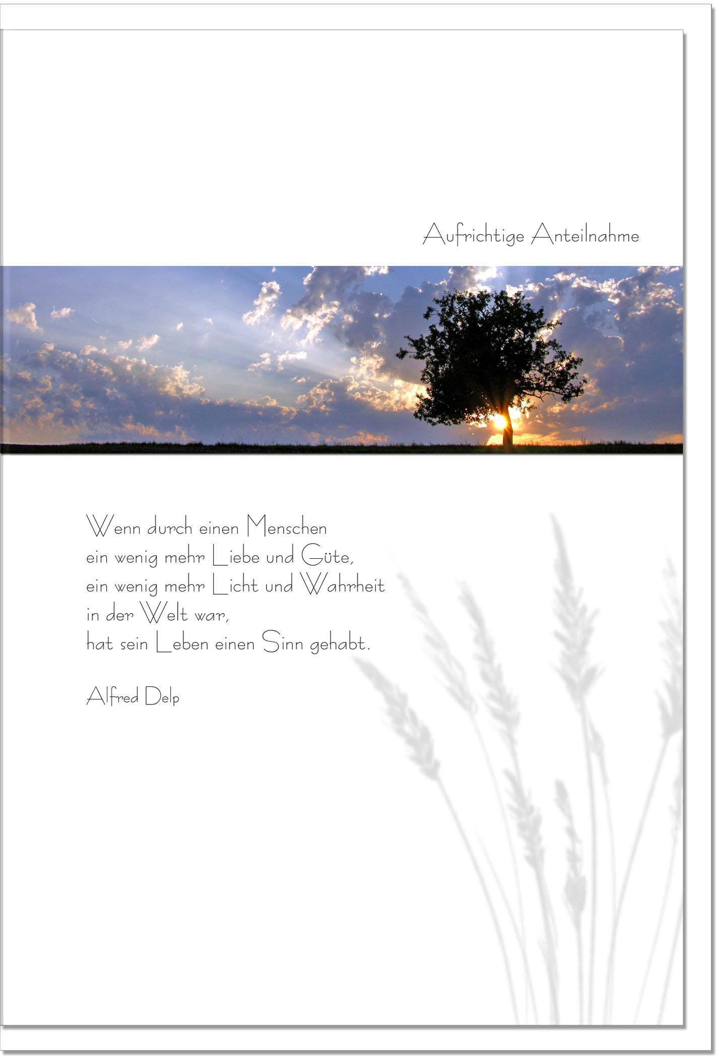 Trauerkarte LICHT UND WAHRHEIT | Sonnenuntergang | metALUm #00077