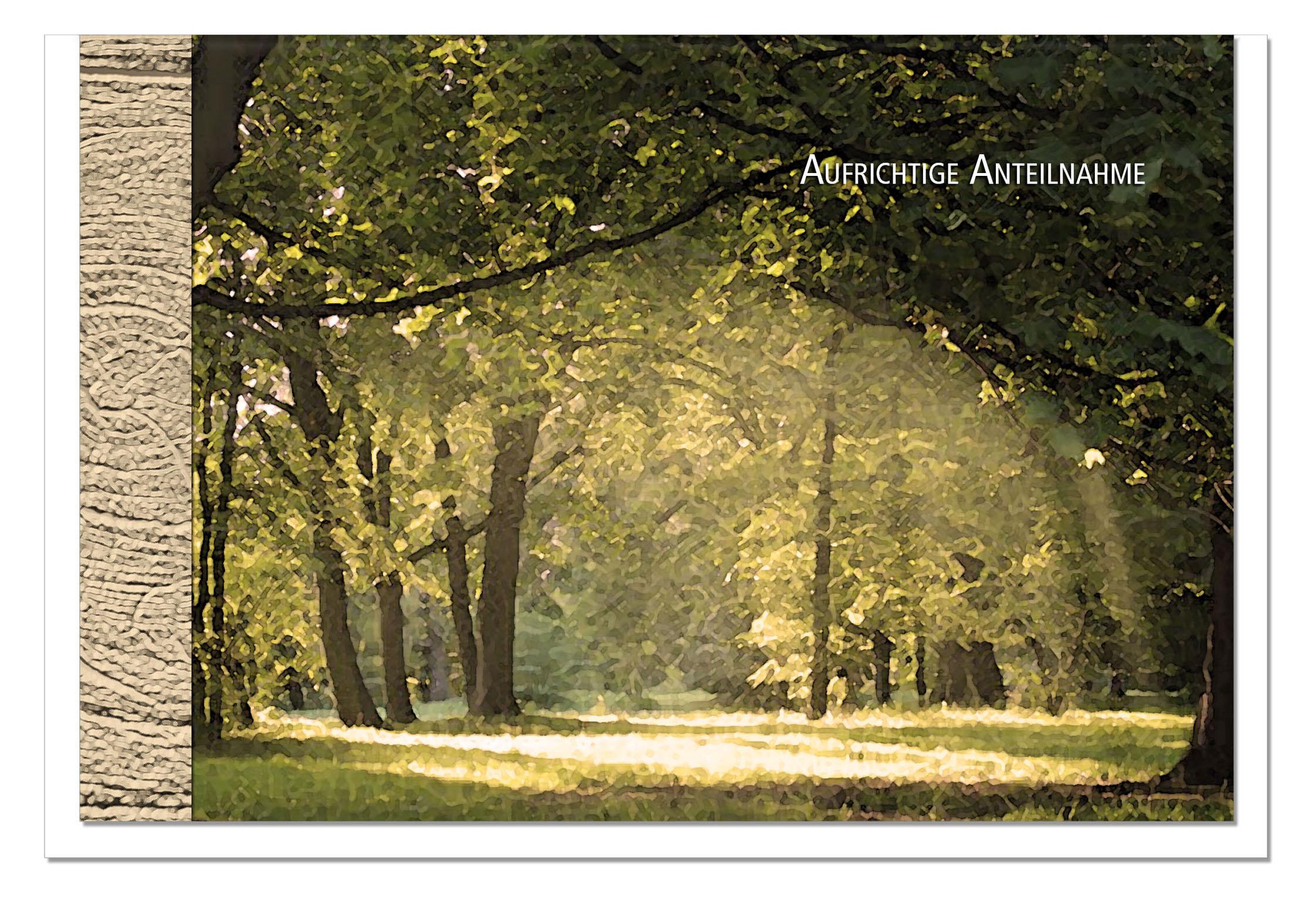 Kondolenzkarte LICHT | Lichtung im Wald | metALUm #00103