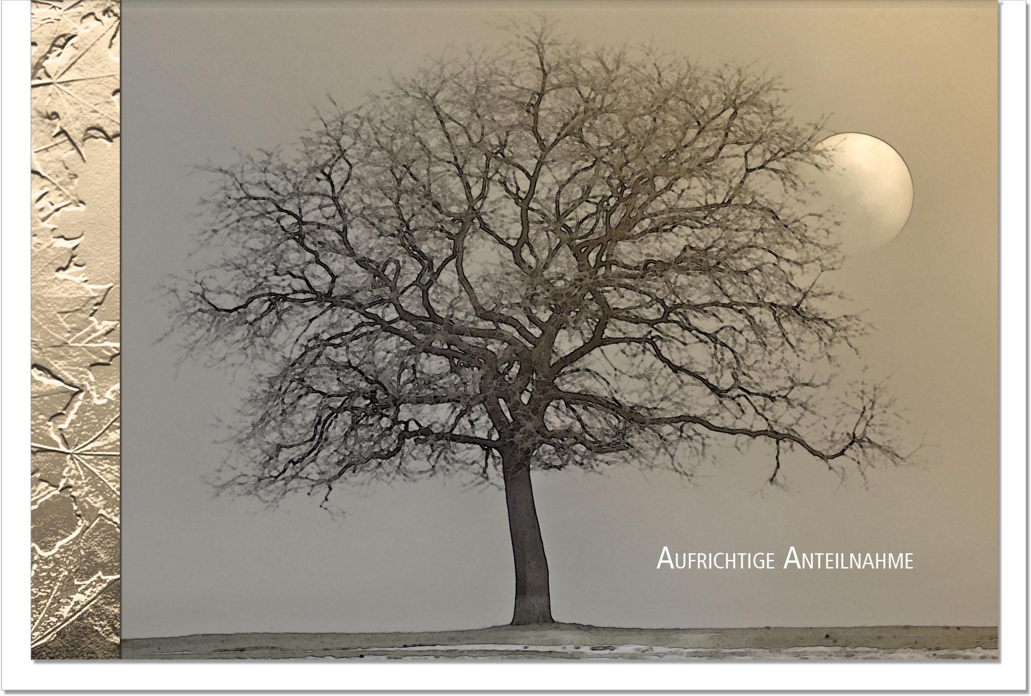 Kondolenzkarte STILLE | Baum im Mondlicht | metALUm #00104