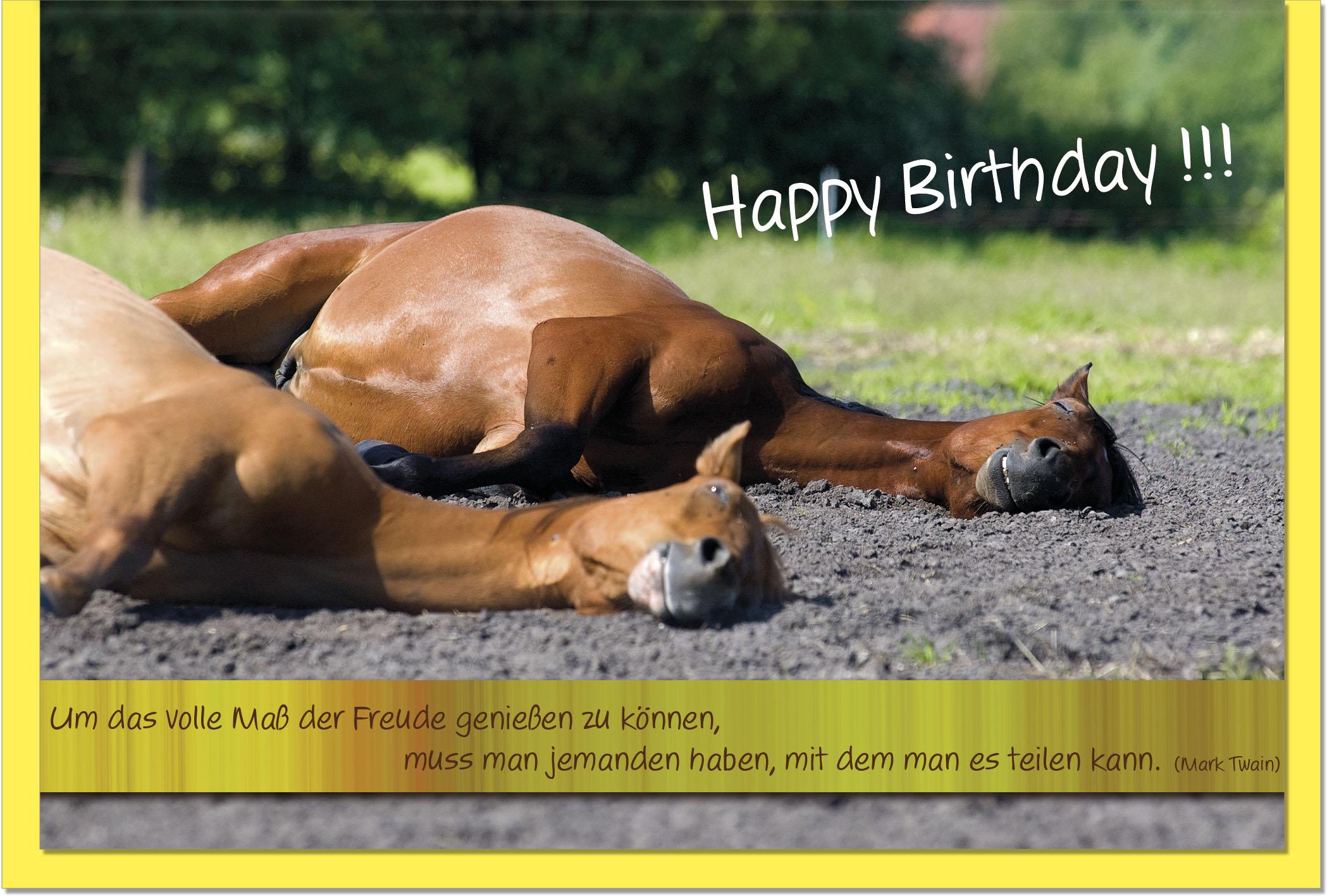 Geburtstagskarten Grusskarten Geburtstag Pferde Geschenkideen