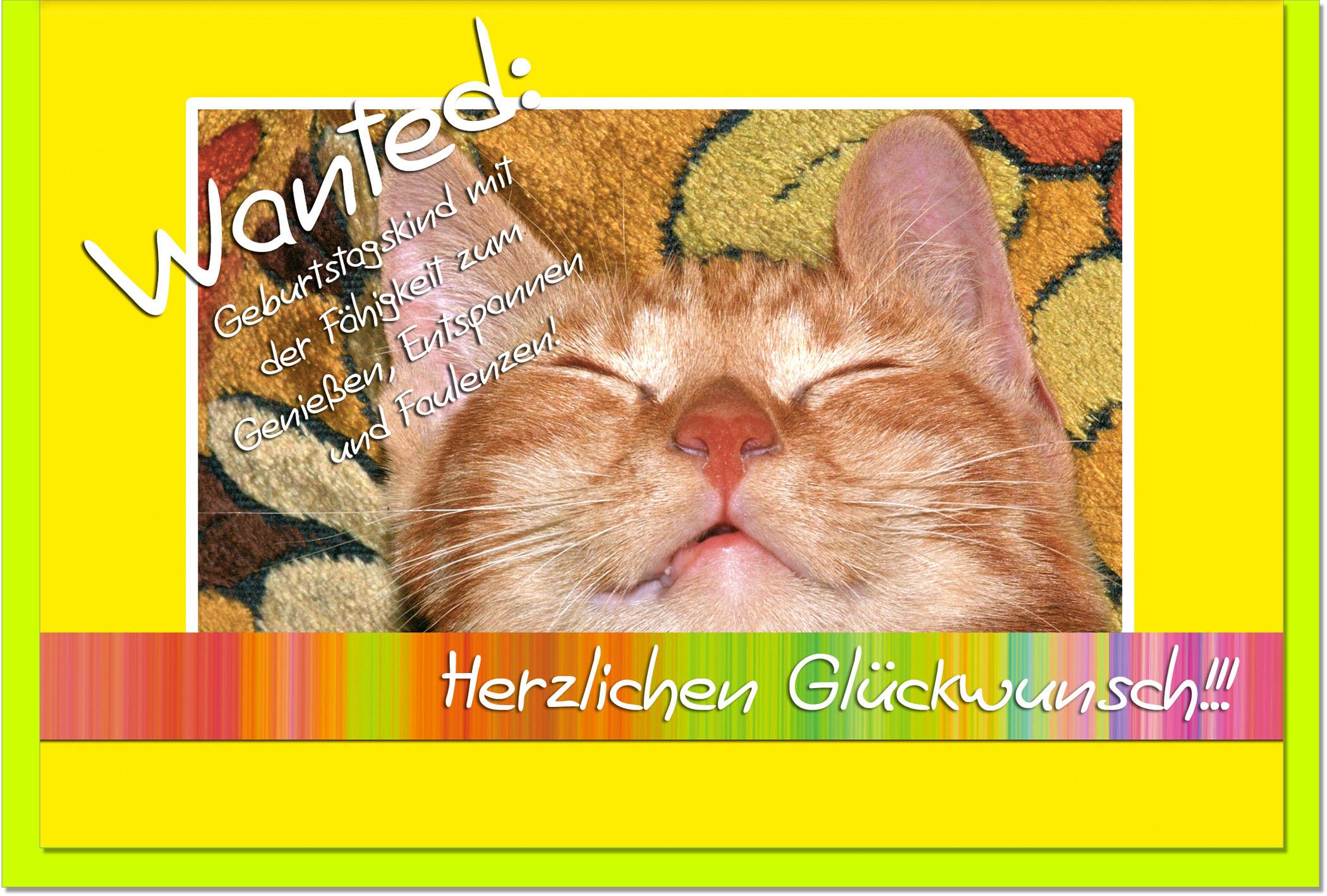 Geburtstagskarten Grusskarten Geburtstag Katze Geschenkideen Und