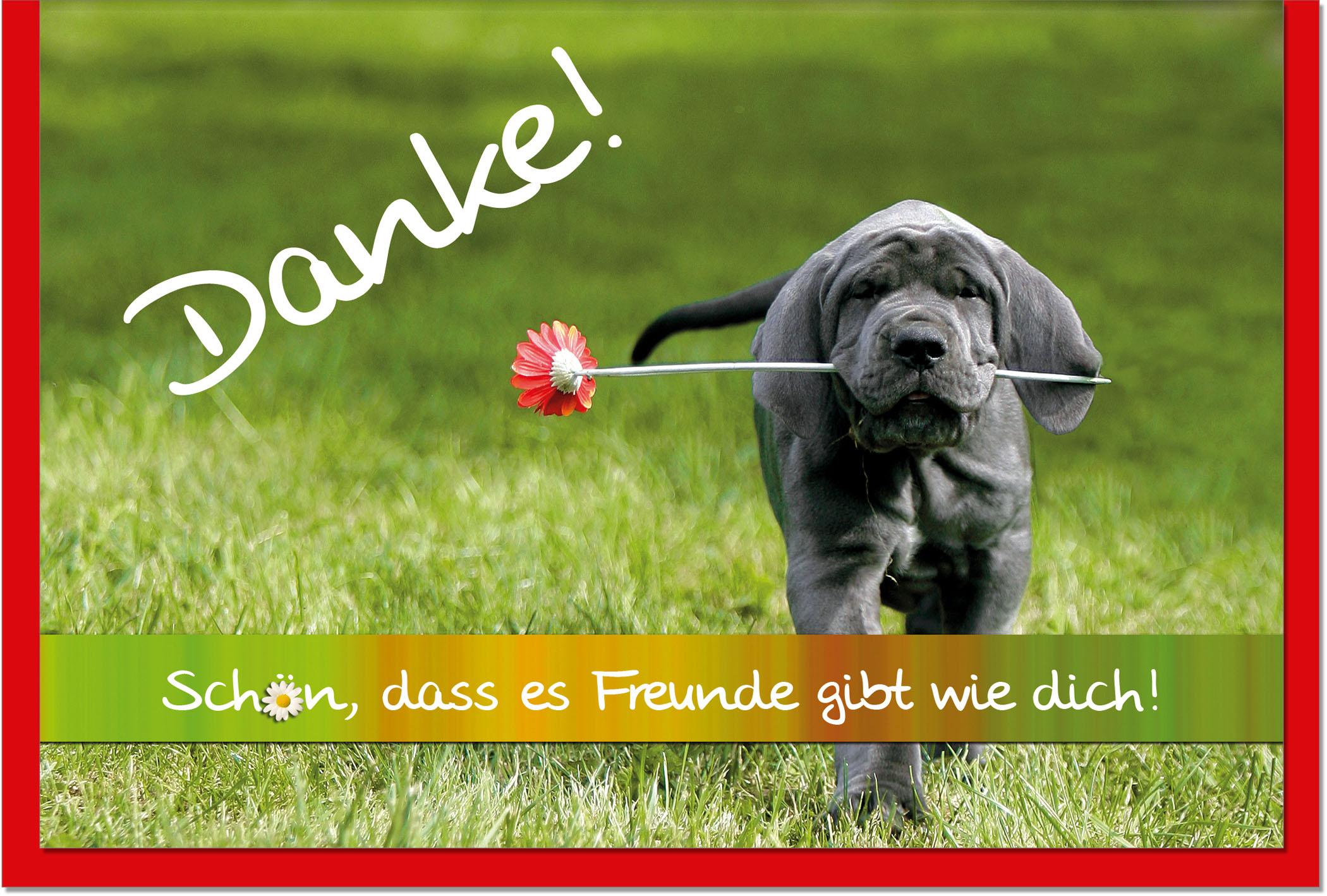 Dankeskarten / Grußkarten /Dankeschön Hund