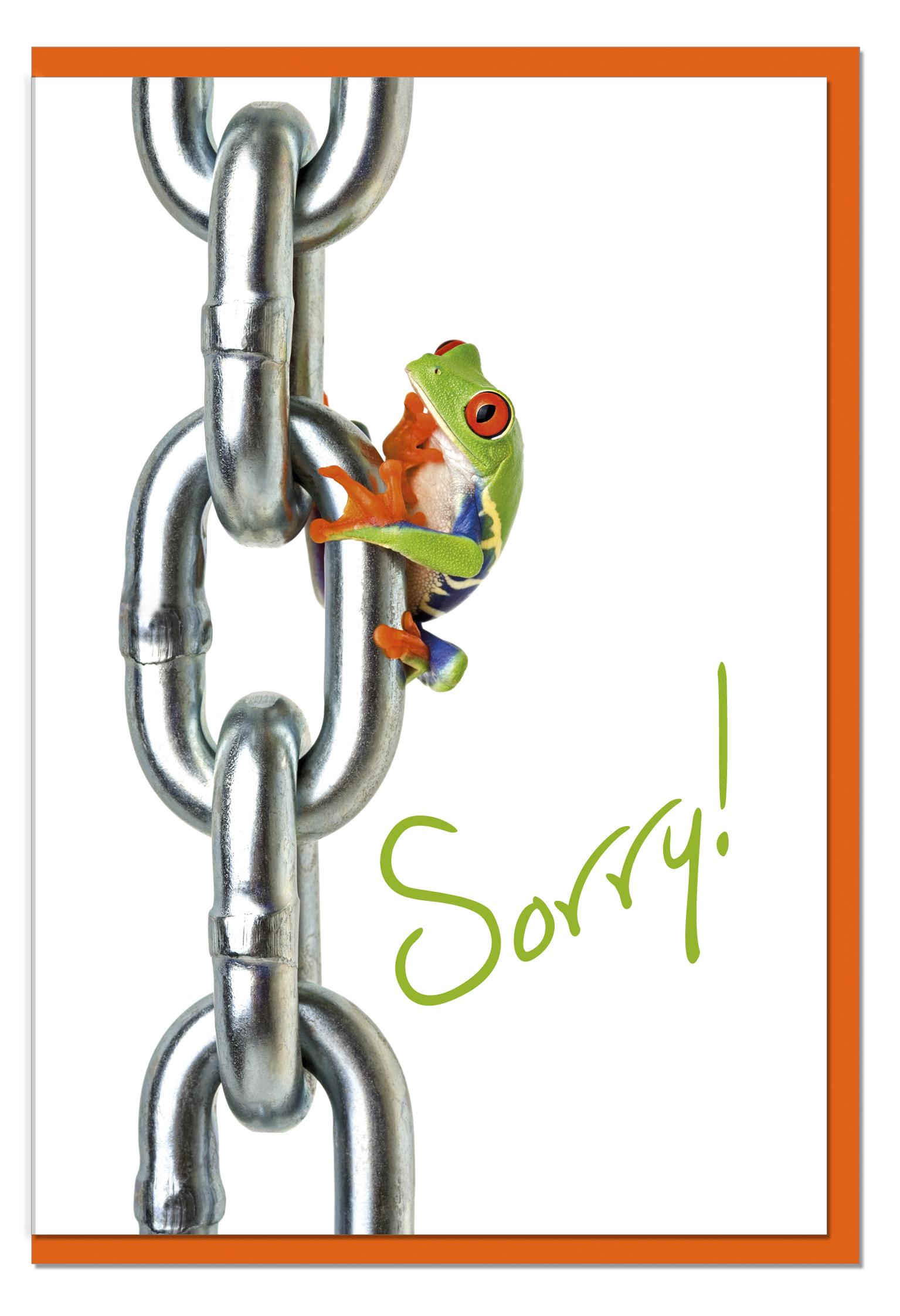 Entschuldigungskarten / Grußkarten /Entschuldigung Frosch