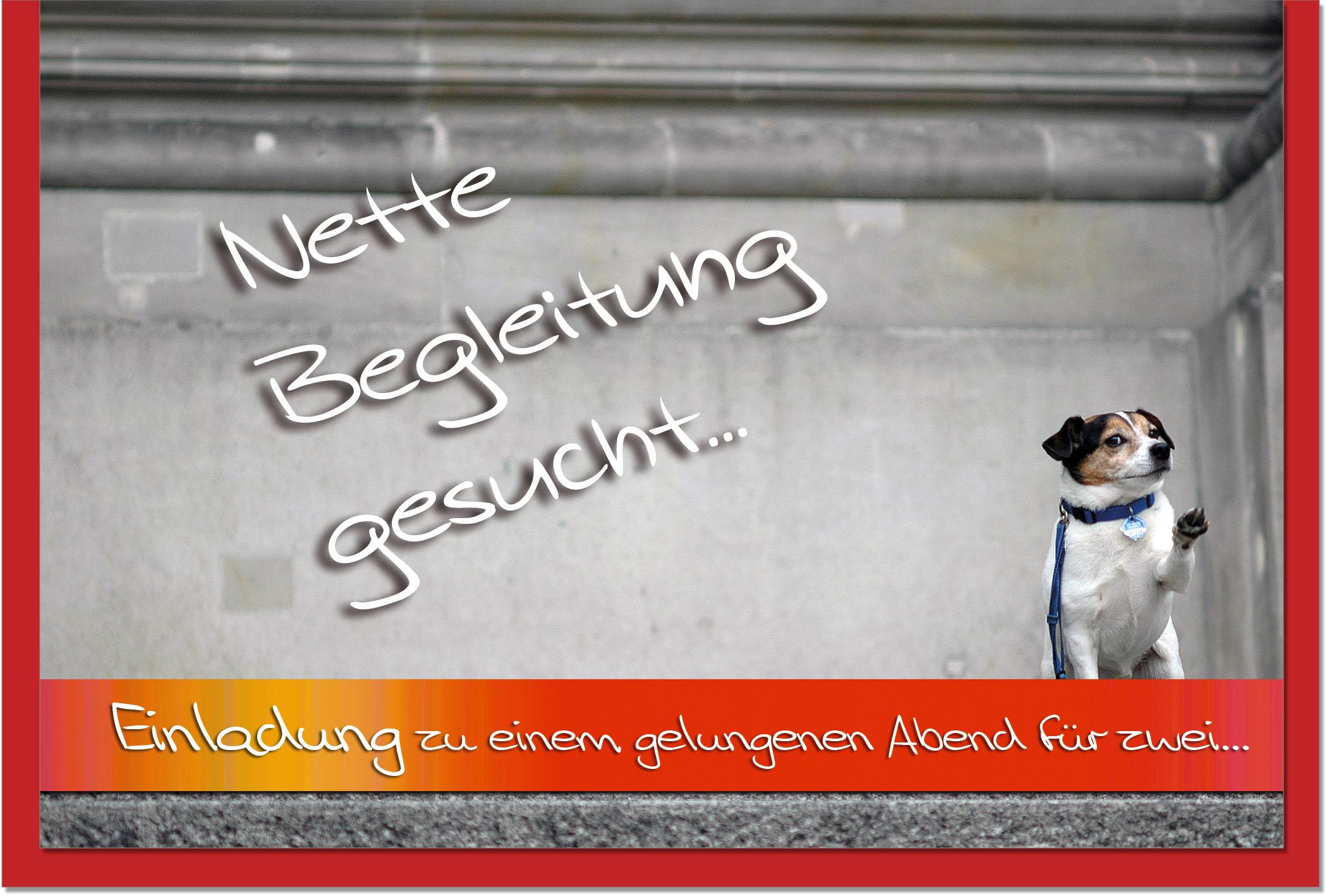 Einladungskarten / Grußkarten /Einladung Hund