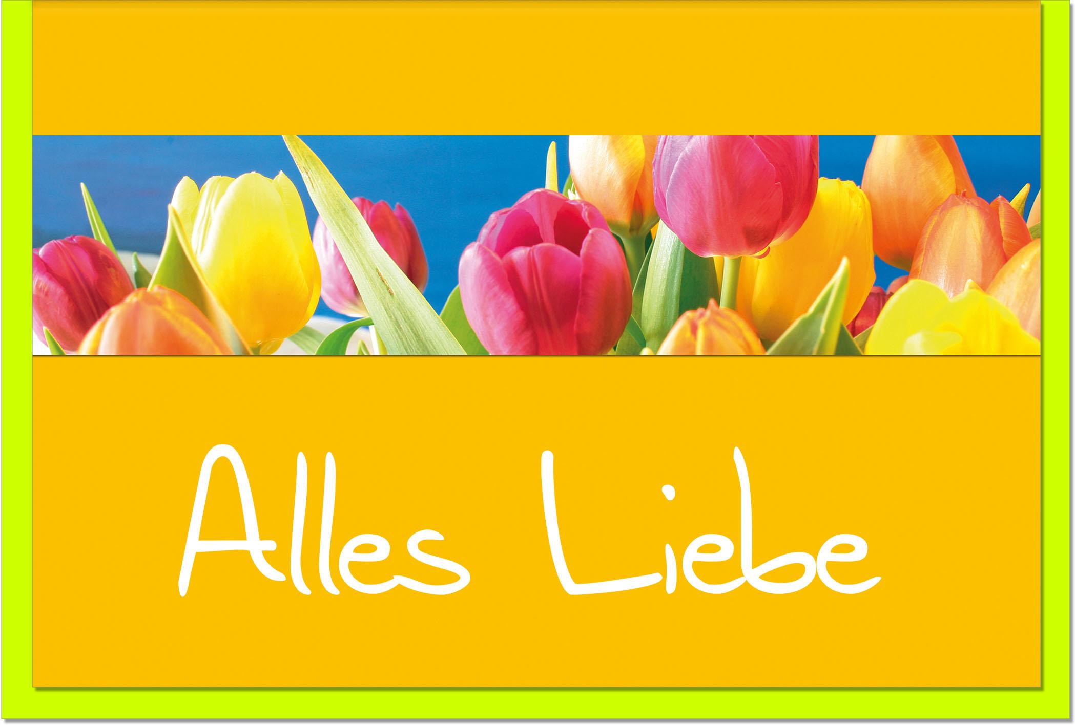 Grußkarten /Verschiedenes Tulpen