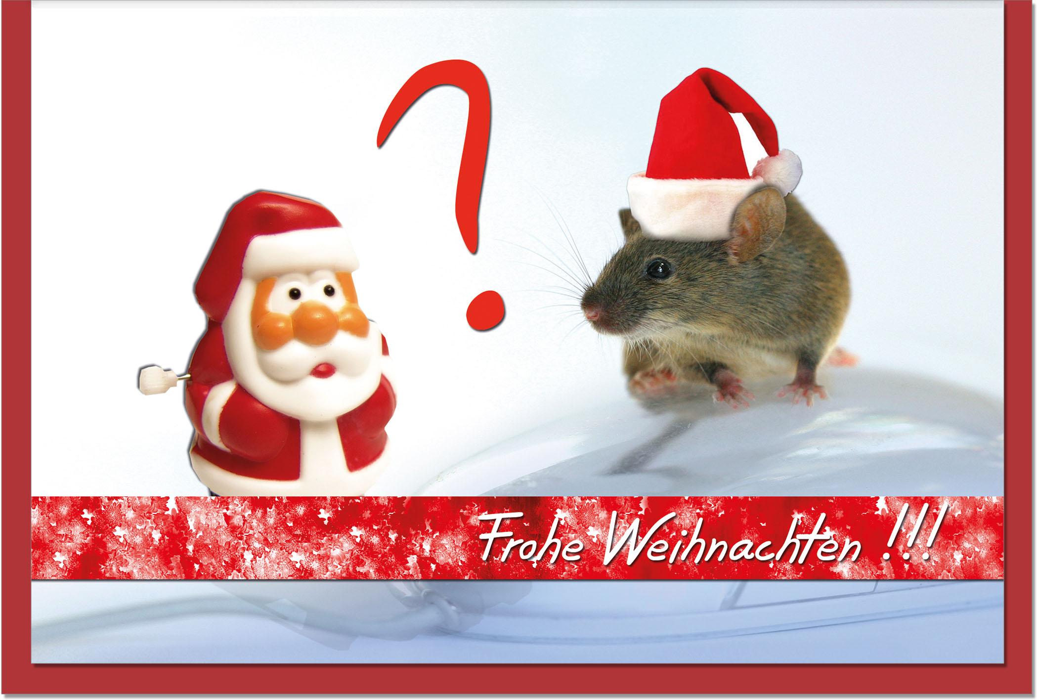 Weihnachtskarten / Grußkarten /Weihnachten Weihnachtliche Maus