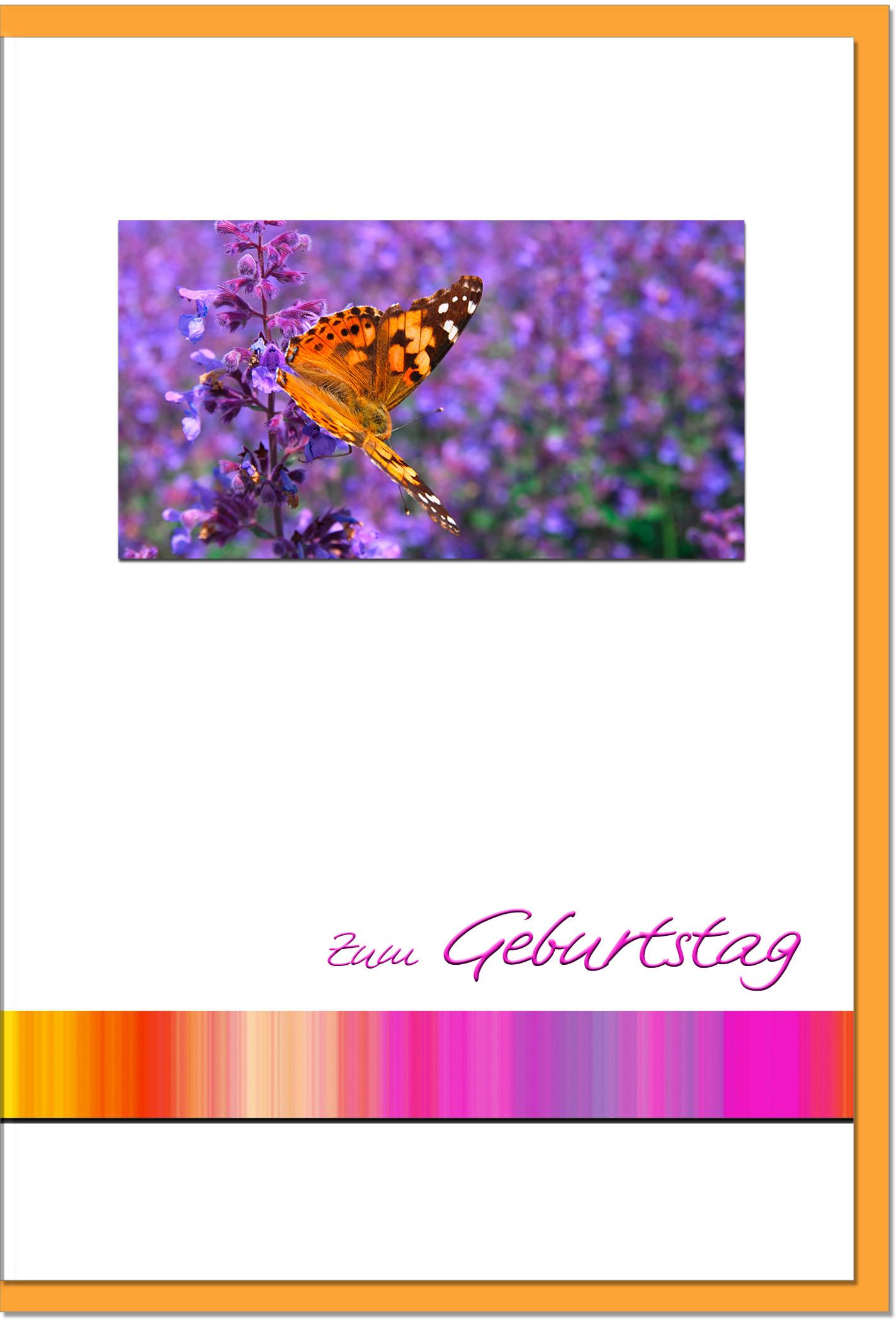 Geburtstagskarten / Grußkarten /Geburtstag Schmetterling