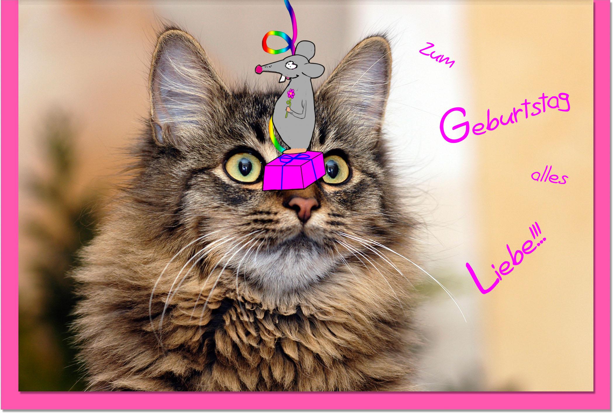 Geburtstagskarten / Grußkarten /Geburtstag Katze und Maus