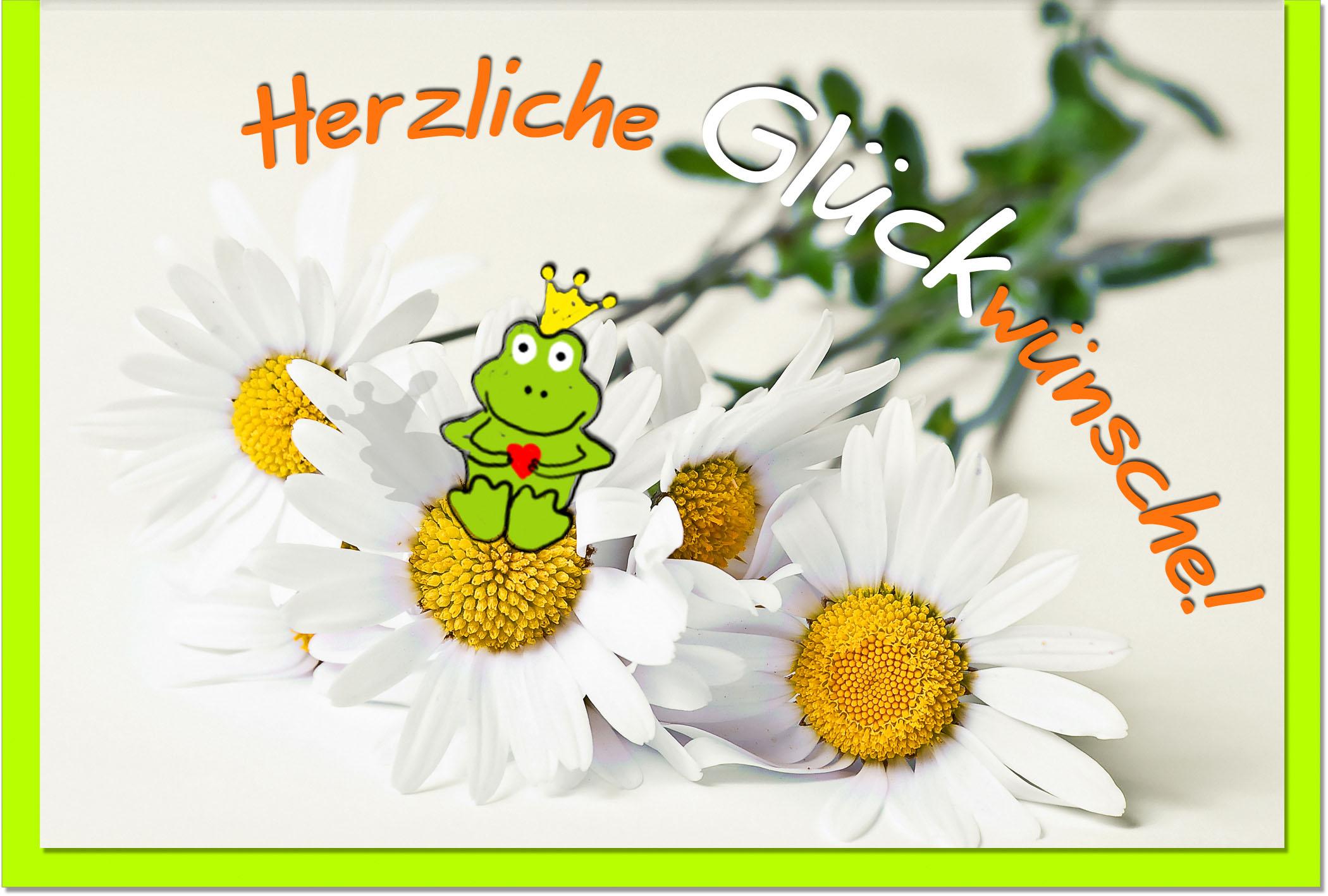 Glückwunschkarten / Grußkarten /Glückwunsch Froschkönig