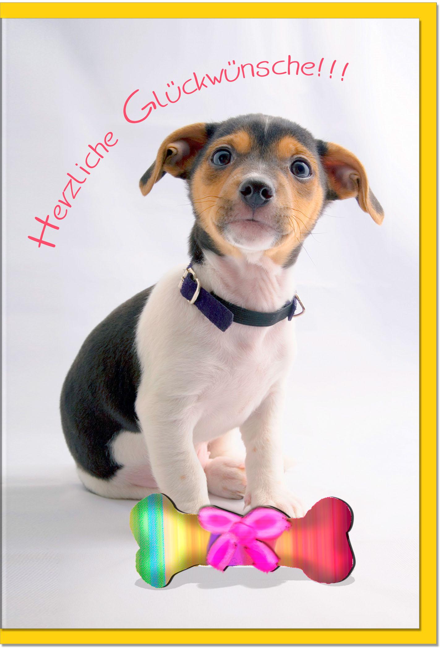 Glückwunschkarten / Grußkarten /Glückwunsch Hund