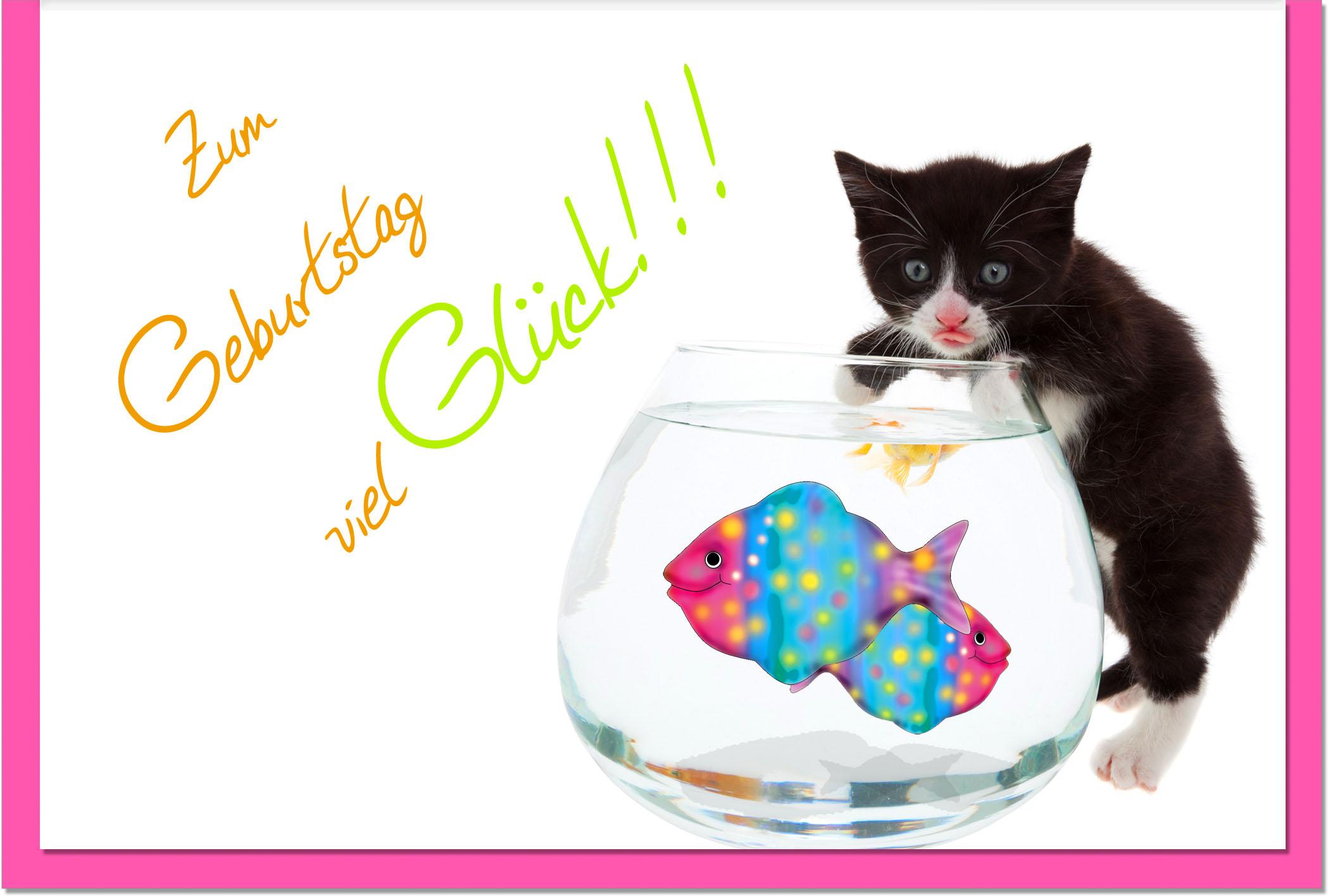 Geburtstagskarten / Grußkarten /Geburtstag Aquarium und Katze