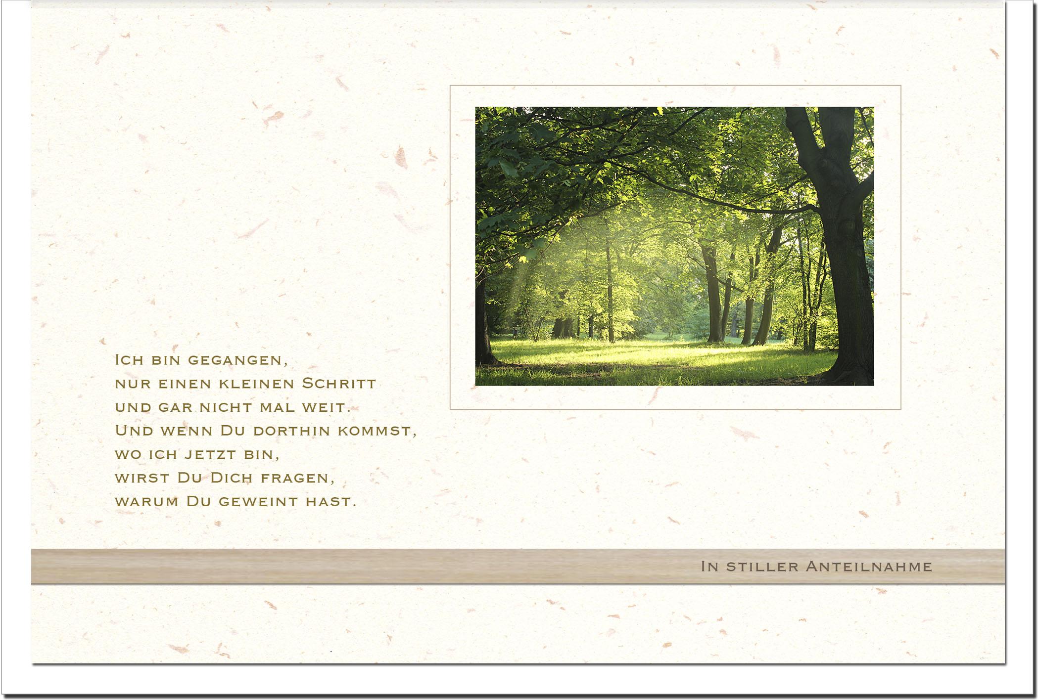 Trauerkarte VORAUSGEGANGEN | Licht im Wald | metALUm #00563