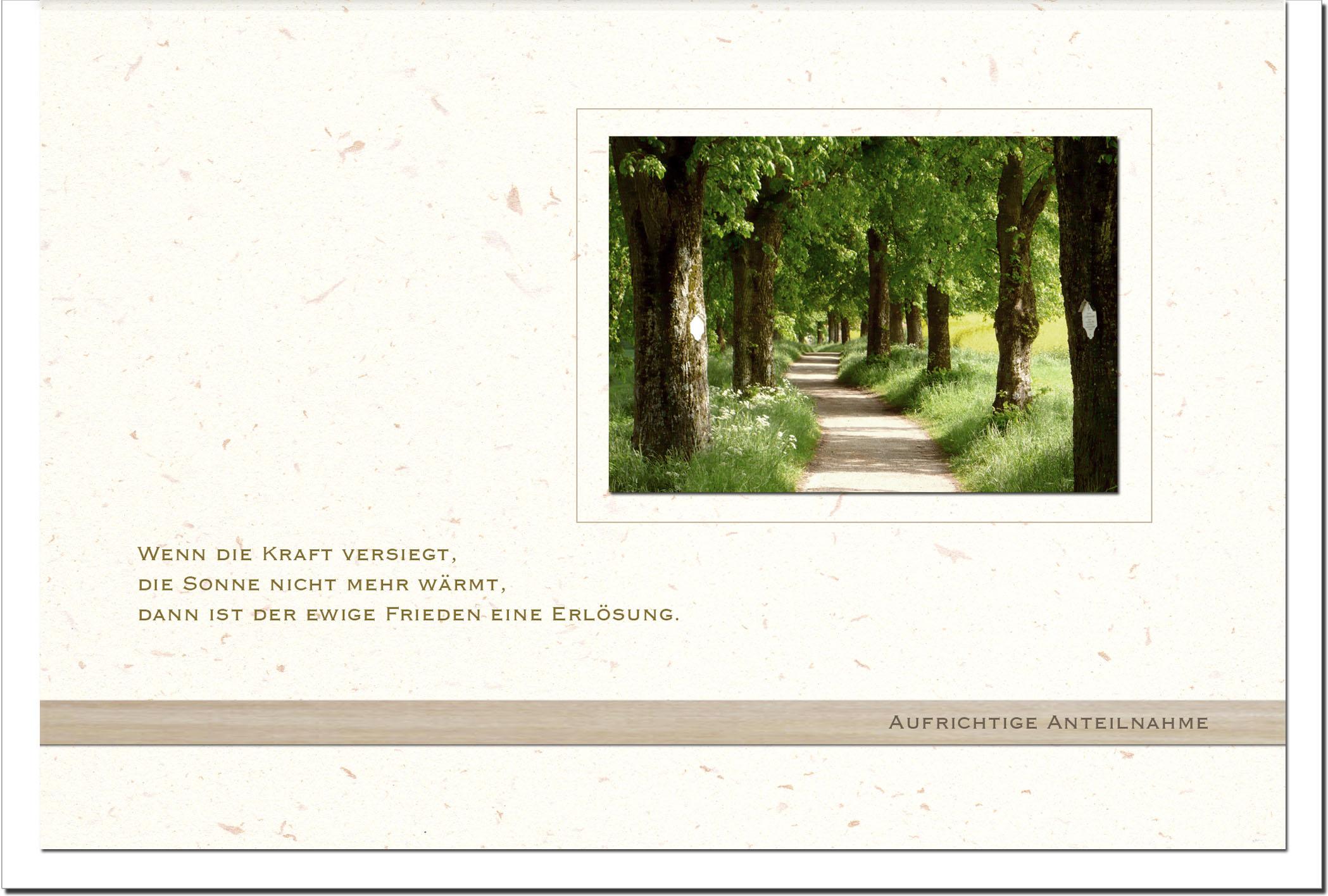 Trauerkarte ERLÖSUNG | Waldweg | metALUm #00566