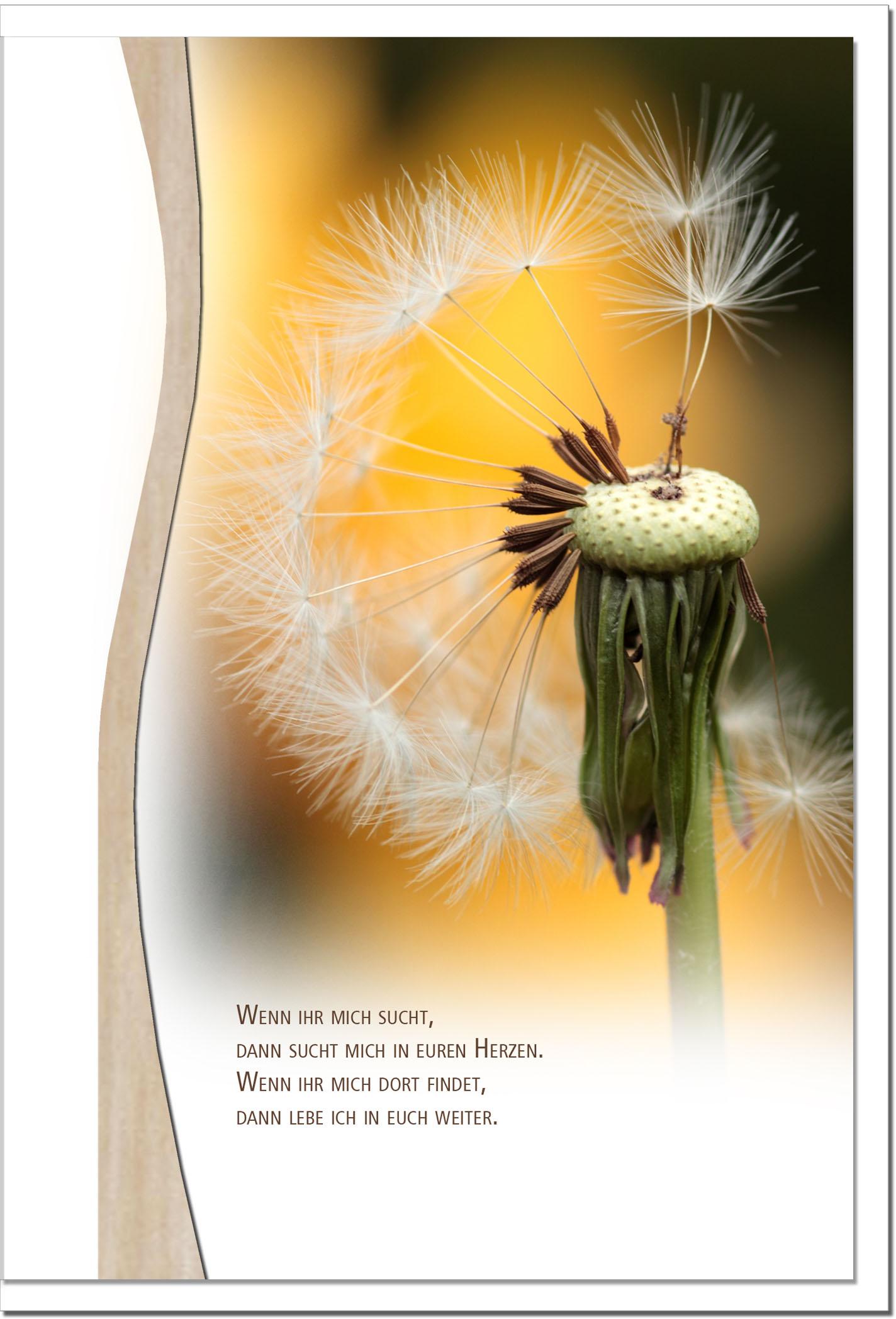 Trauerkarte PUSTEBLUME | Erinnerung | metALUm #01343