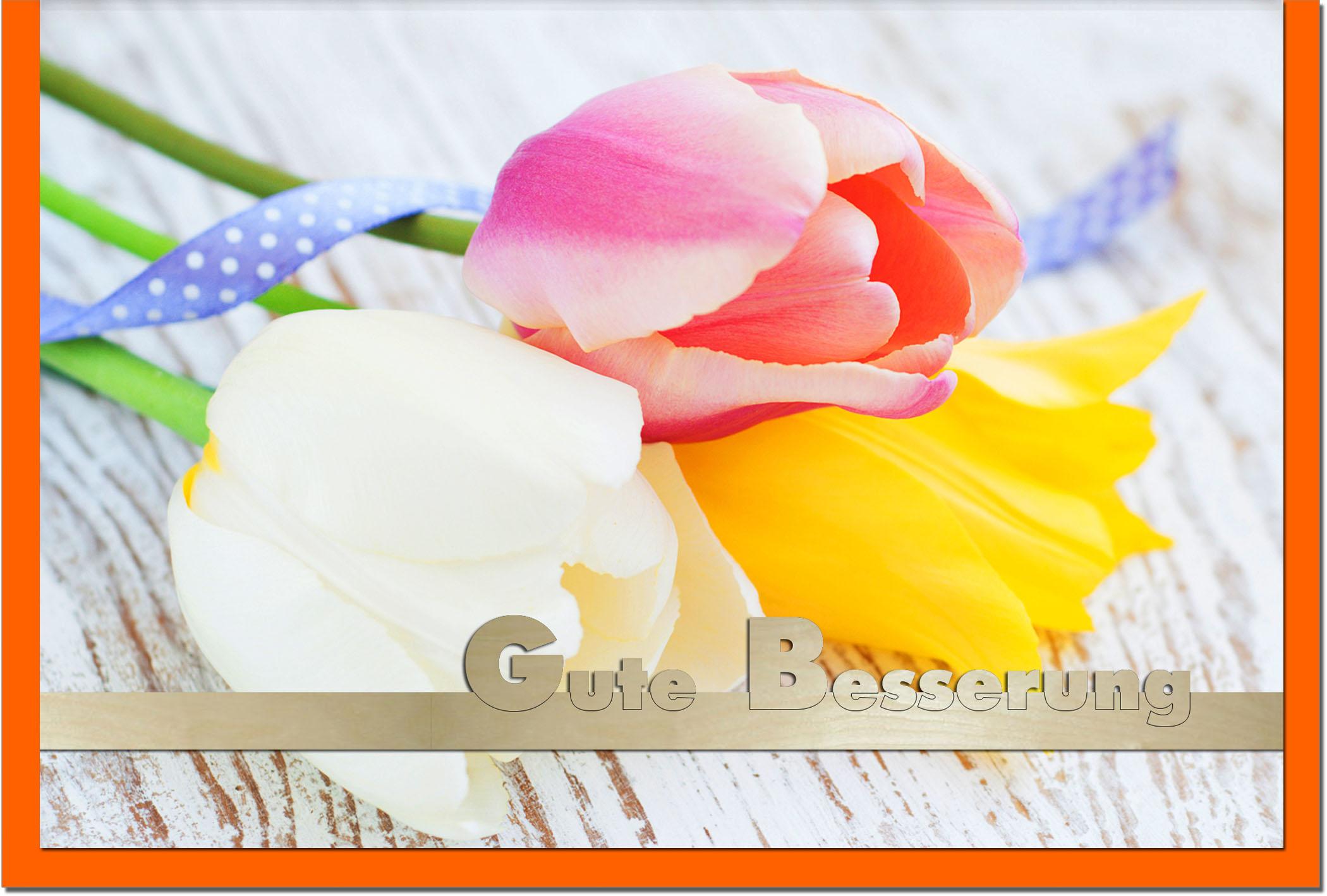 Genesungskarten / Grußkarten /Genesung Tulpen