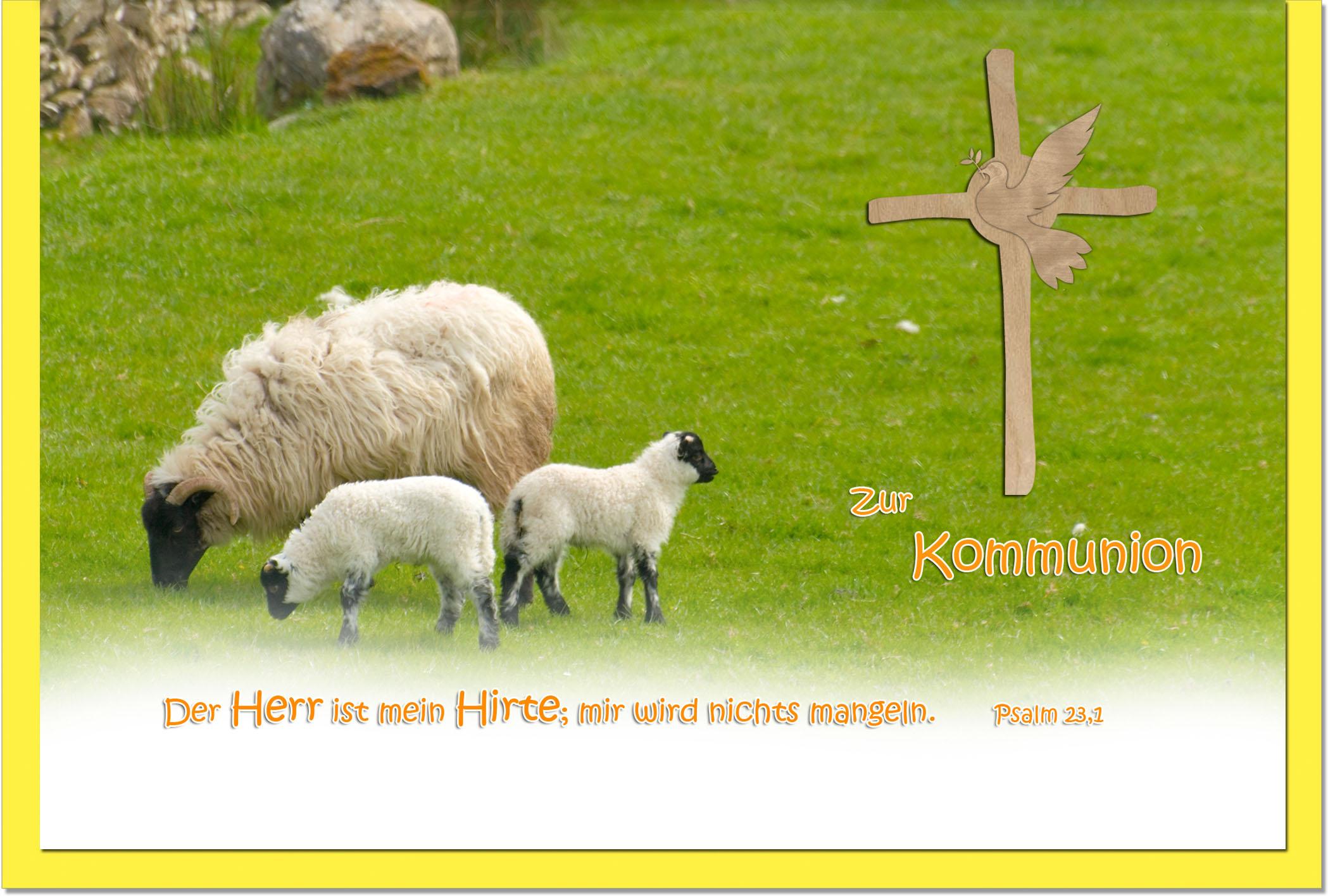 Kommunionskarten / Grußkarten / Glückwunschkarten /Kommunion Schafe