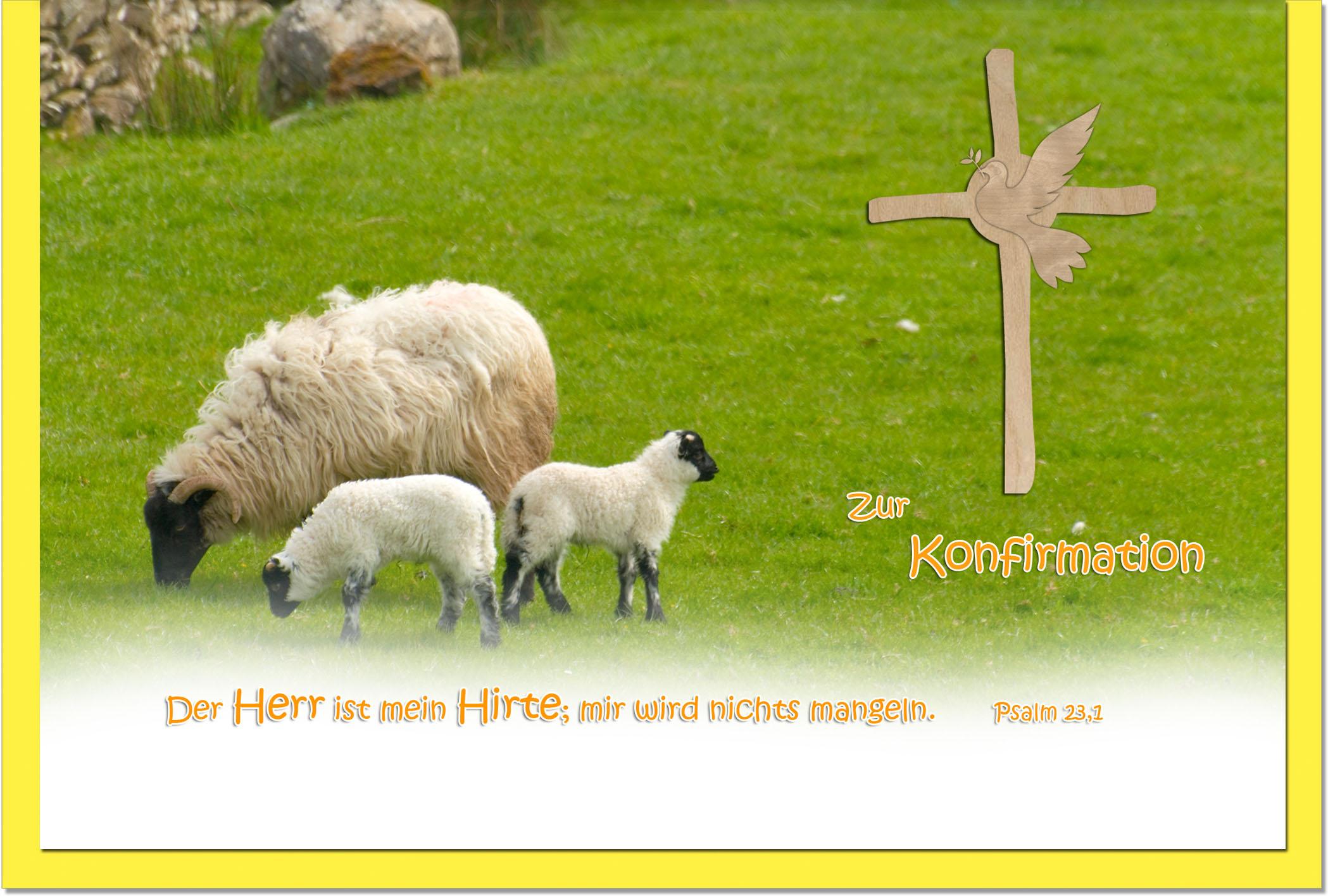 Konfirmationskarten / Grußkarten / Glückwunschkarten /Konfirmation Schafe