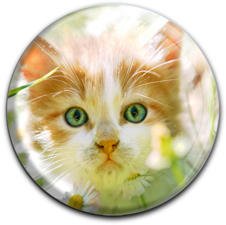 """metALUm Premium Magnet in runder Form """"Katze"""""""