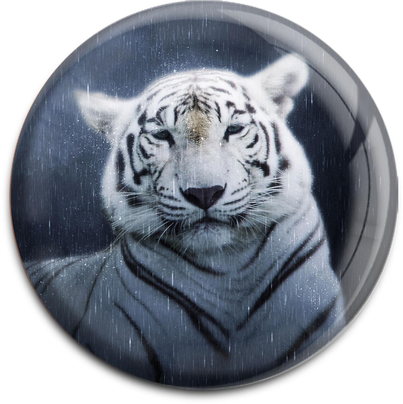 Magnet / Kühlschrankmagnet / Tiger / Raubtiere / Wildkatzen