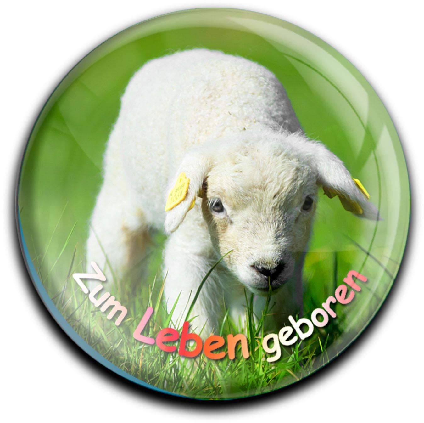 """metALUm Premium Magnete rund """"Lamm"""""""