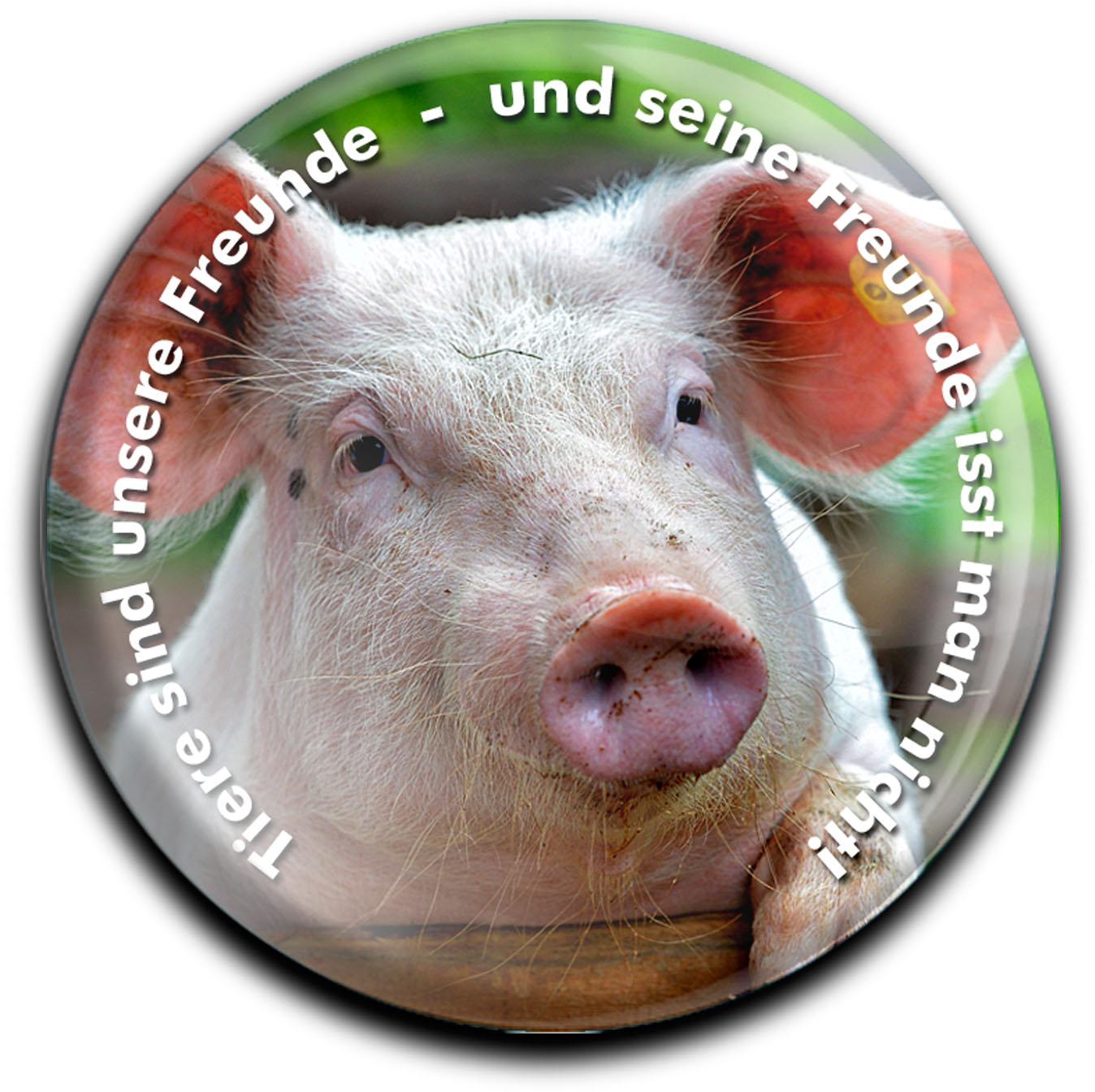 """metALUm Premium Magnete rund """"Schwein"""""""