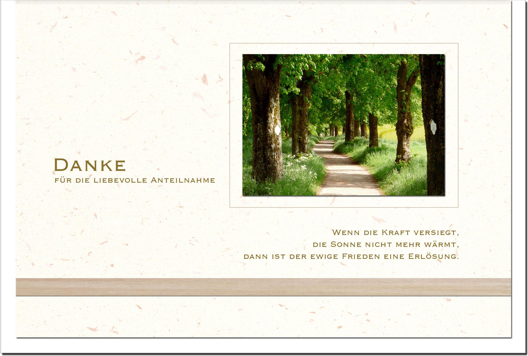 Danksagung Danksagungskarten / Waldweg