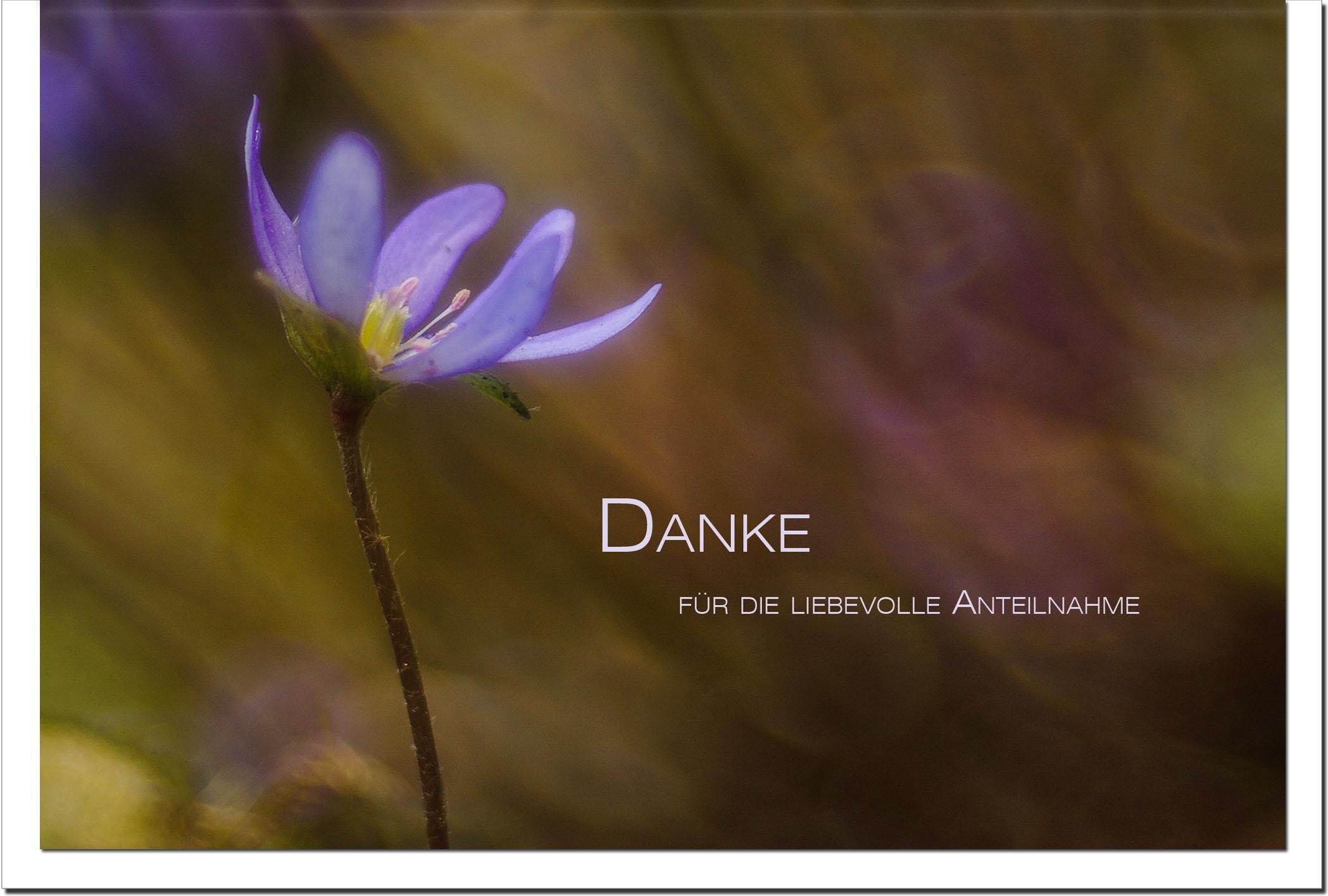 Danksagung Danksagungskarten / Blaue Blume / Stilvoll Niveauvoll Einfühlsam