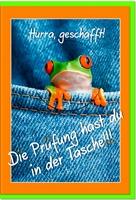 Prüfungskarten / Grußkarten /Prüfung Frosch