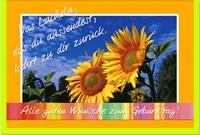 Geburtstagskarten / Grußkarten /Geburtstag Sonnenblumen