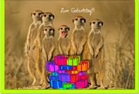 Geburtstagskarten / Grußkarten /Geburtstag Erdmännchen