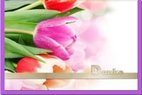 Dankeskarten / Grußkarten /Dankeschön Tulpen