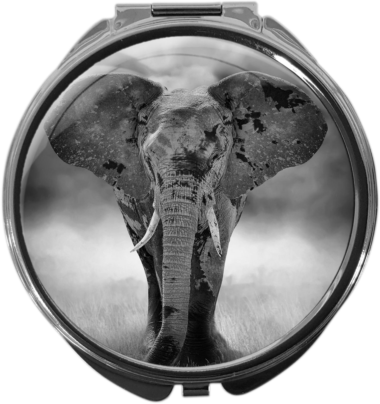 Pillendose / Elefant / Wildtiere