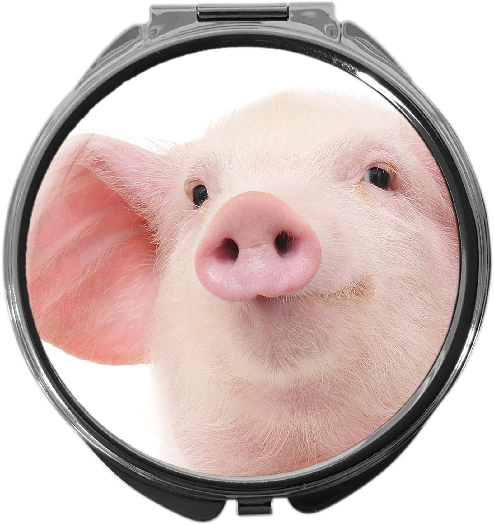 Pillendose / Schwein