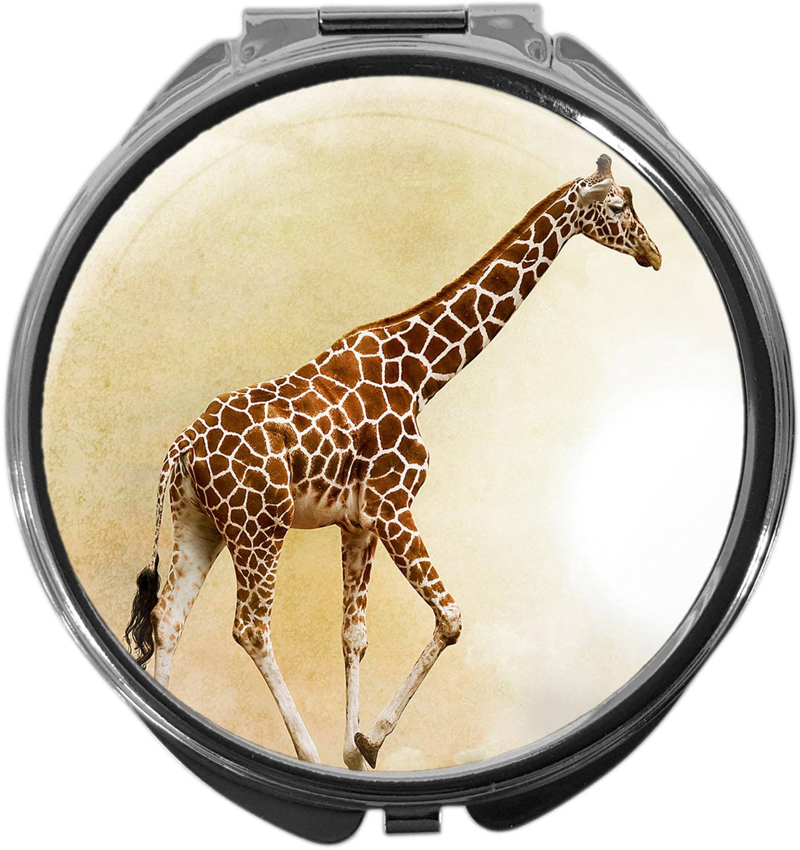 Pillendose / Giraffe / Wildtiere