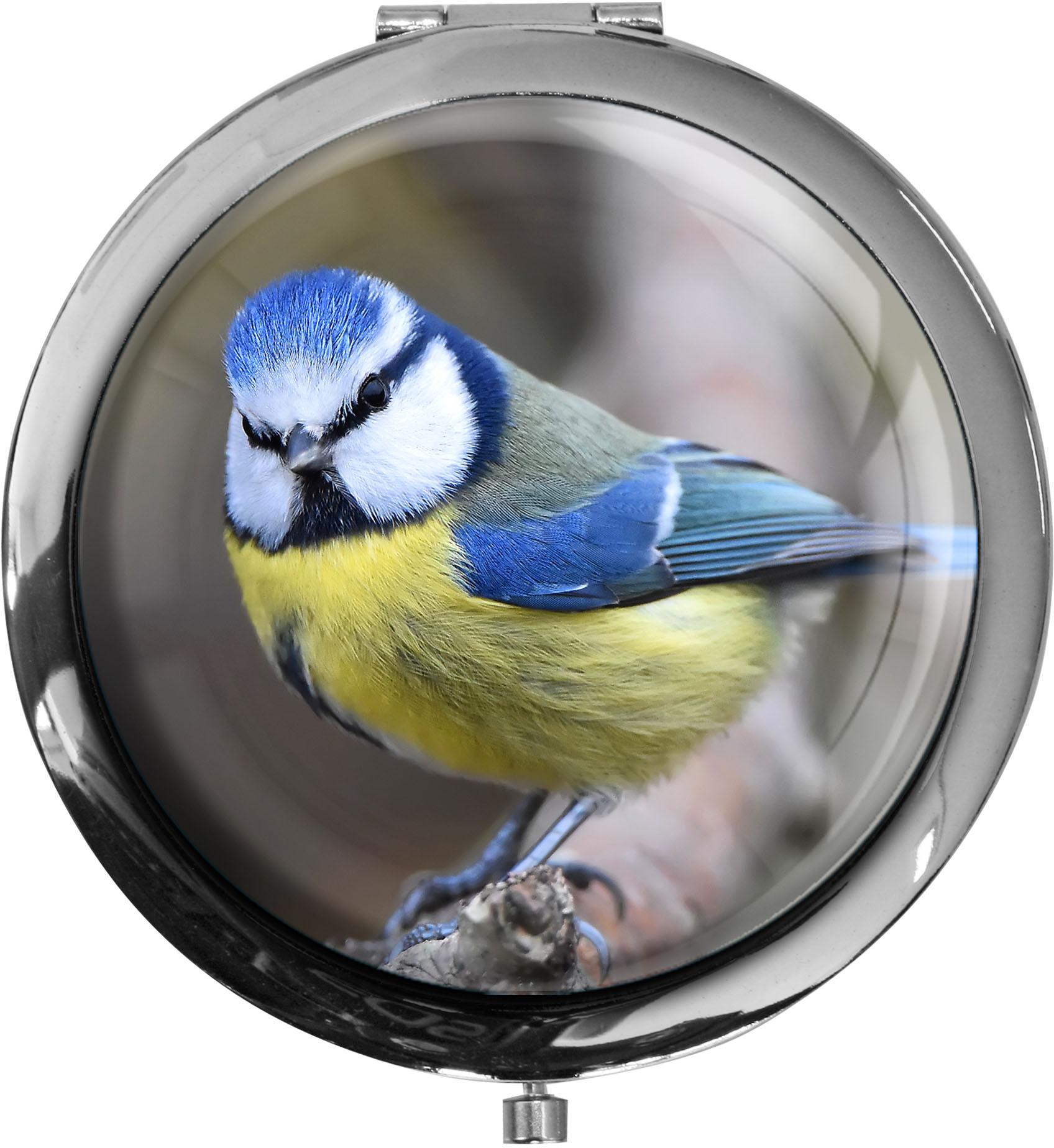 Pillendose XXL / Meise / Vögel