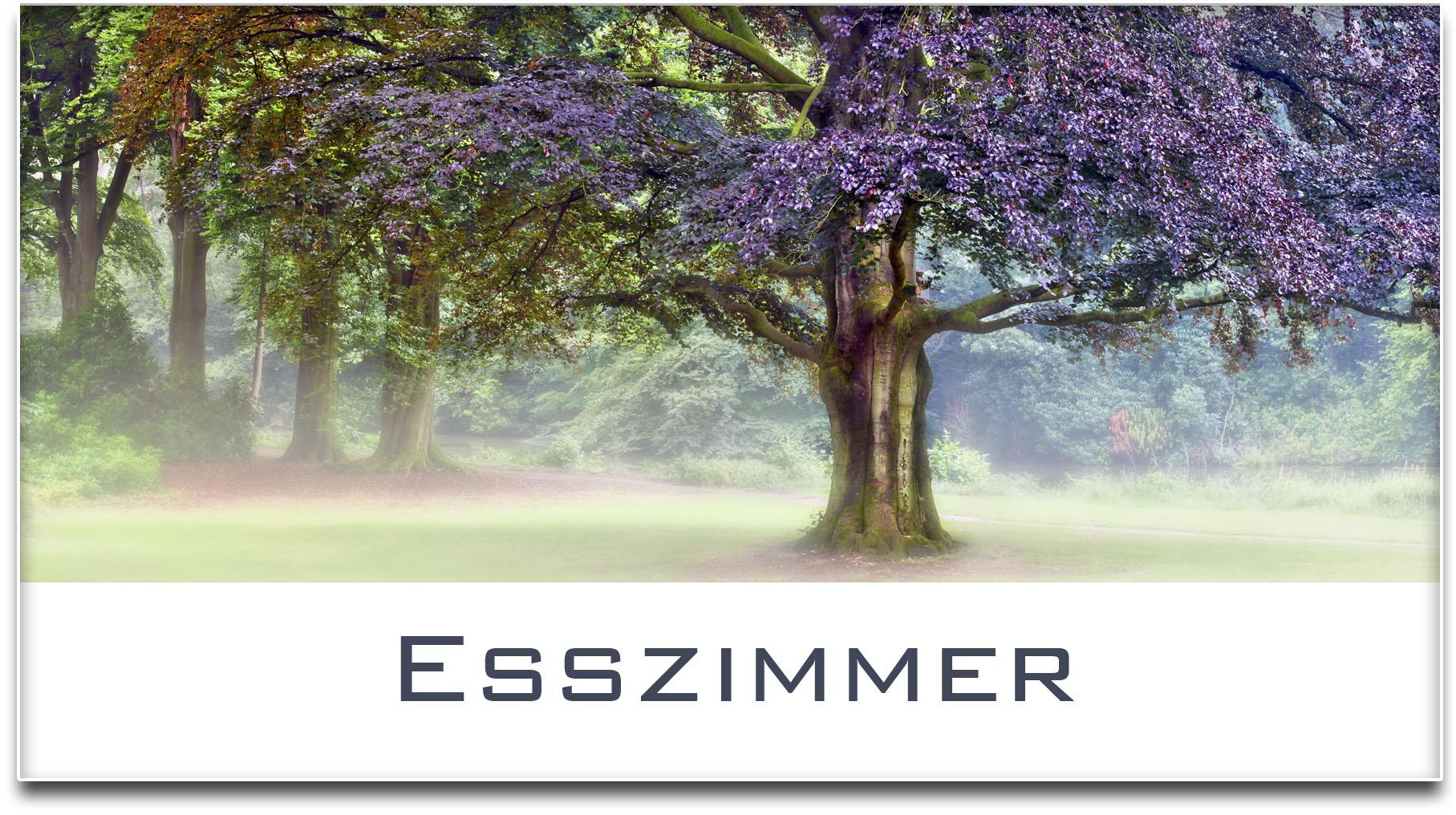 Türschild / Haustürschild / Buche / Baum / Esszimmer / Selbstklebend