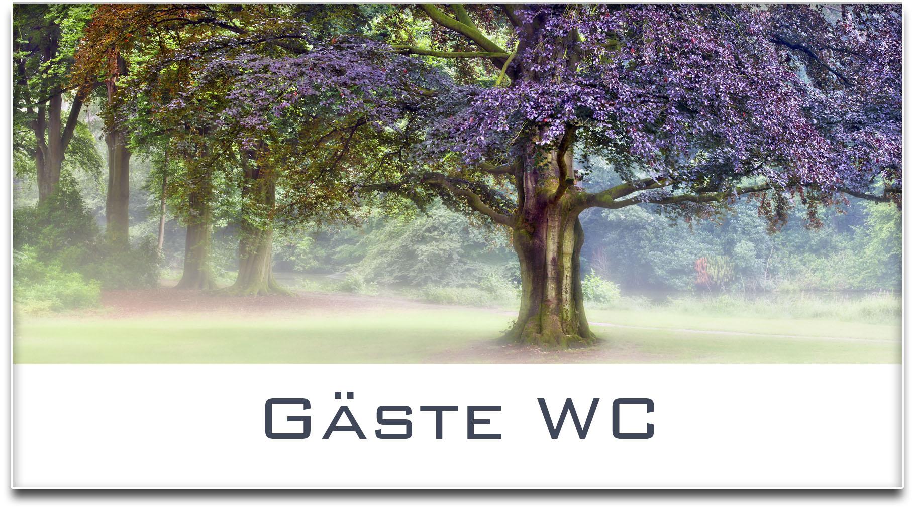 Türschild / Haustürschild / Buche / Baum / Gäste WC / Selbstklebend