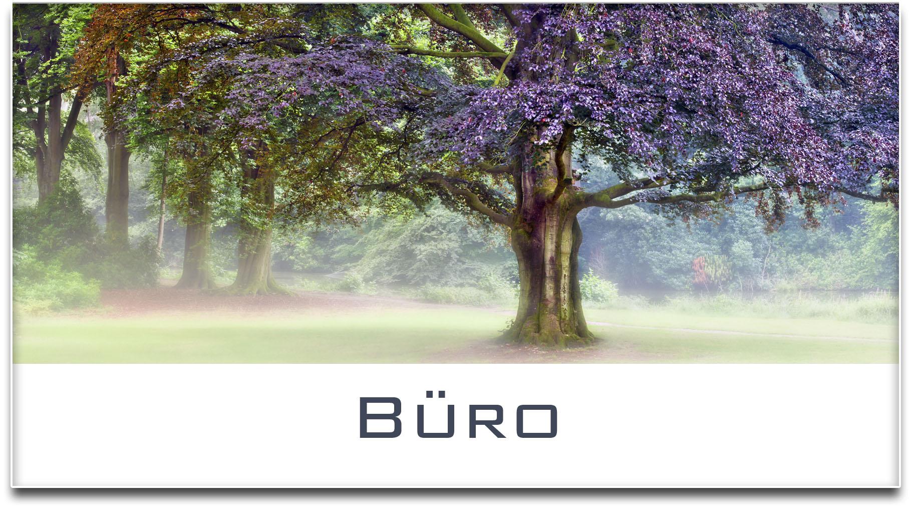 Türschild / Haustürschild / Buche / Baum / Büro / Selbstklebend