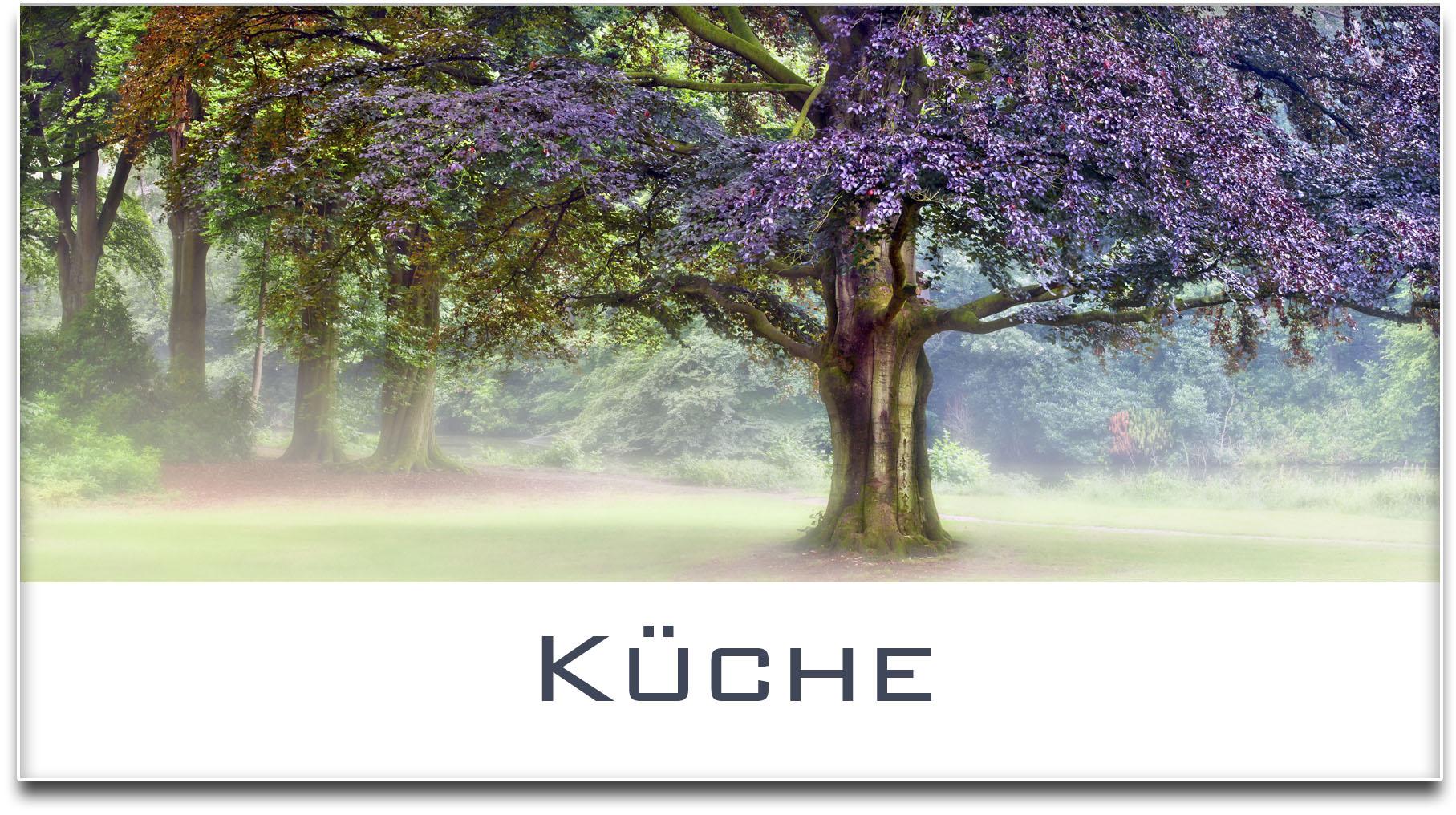 Türschild / Haustürschild / Buche / Baum / Küche / Selbstklebend