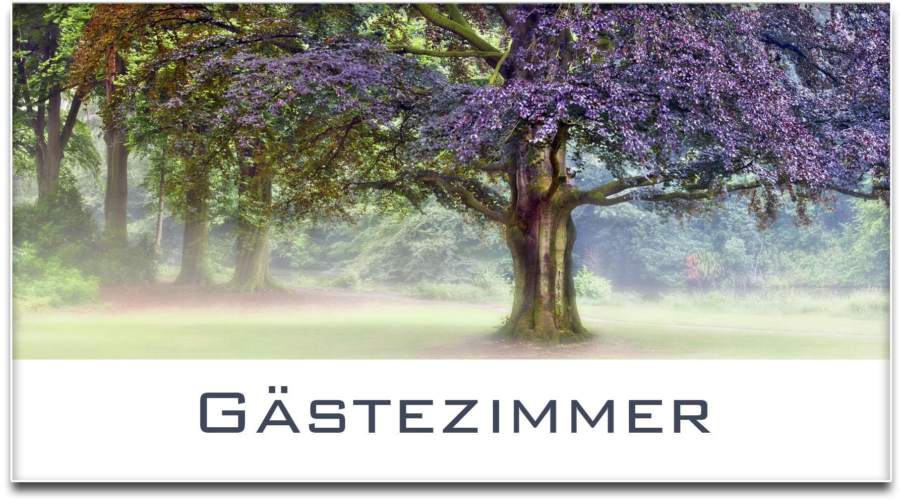Türschild / Haustürschild / Buche / Baum / Gästezimmer / Selbstklebend
