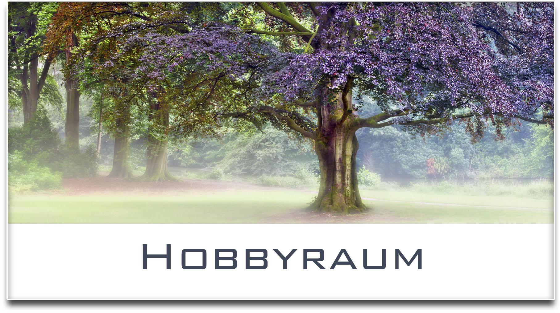 Türschild / Haustürschild / Buche / Baum / Hobbyraum / Selbstklebend