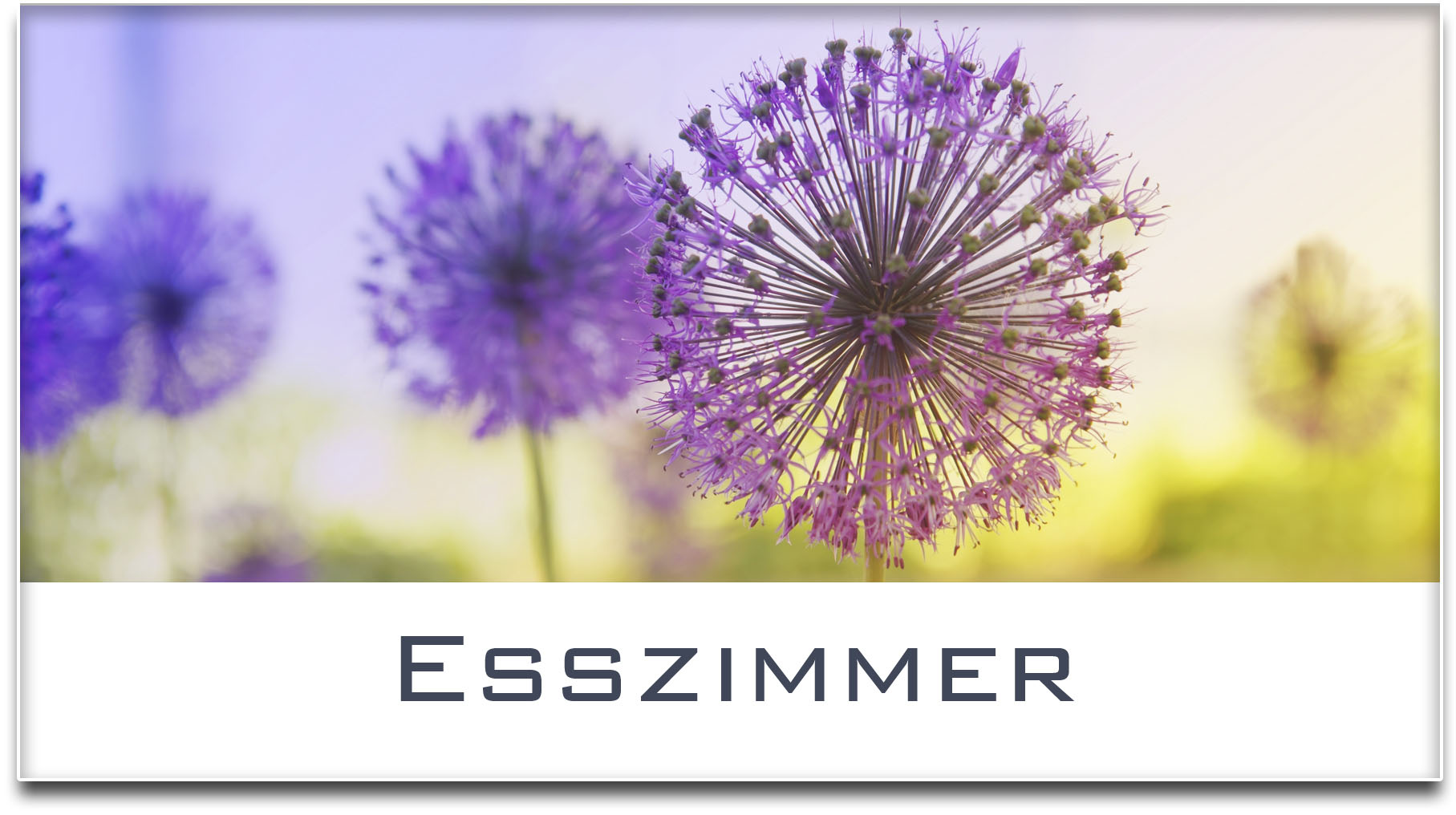 Türschild / Haustürschild / Blume / Esszimmer / Selbstklebend