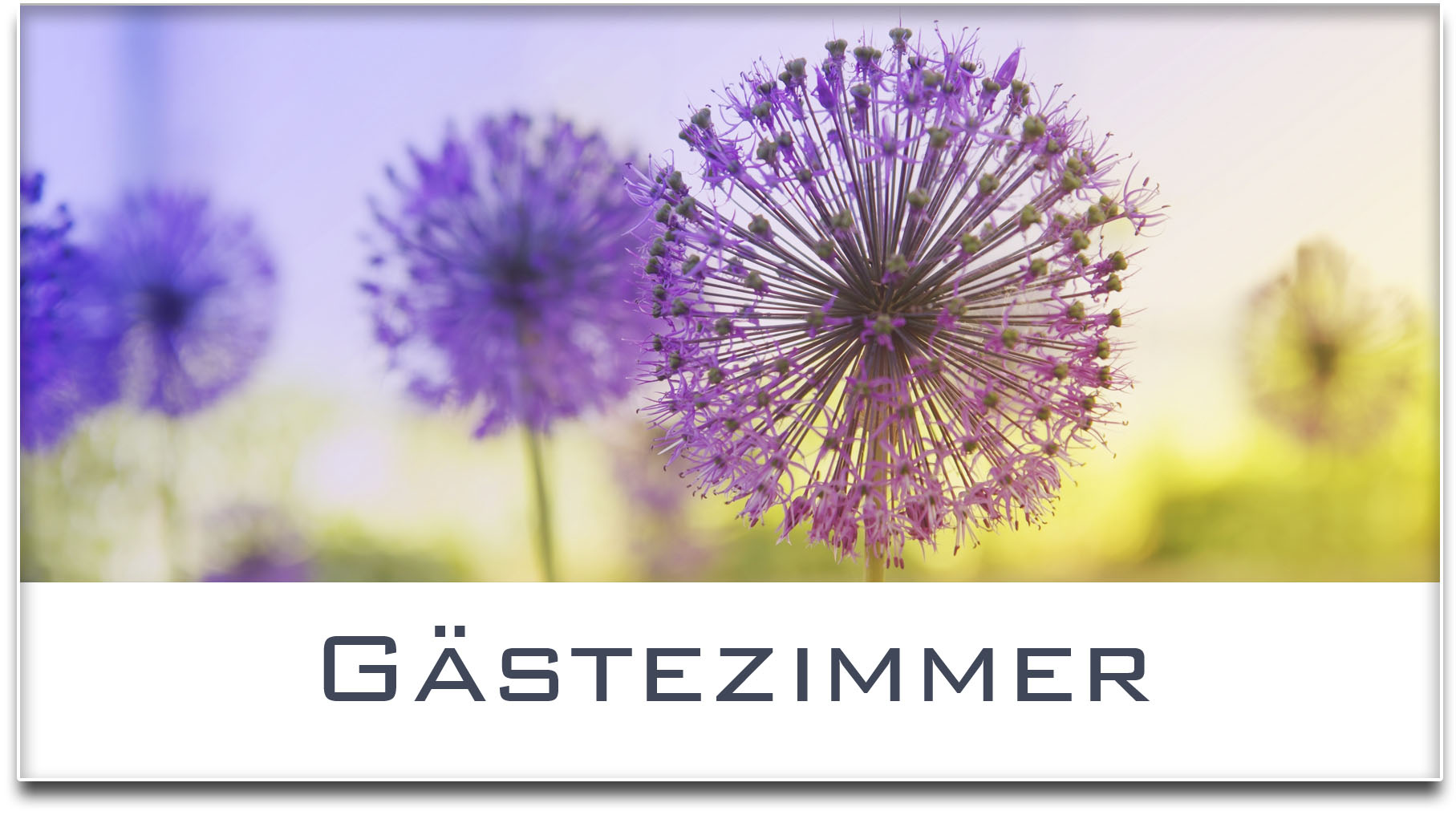 Türschild / Haustürschild / Blume / Gästezimmer / Selbstklebend