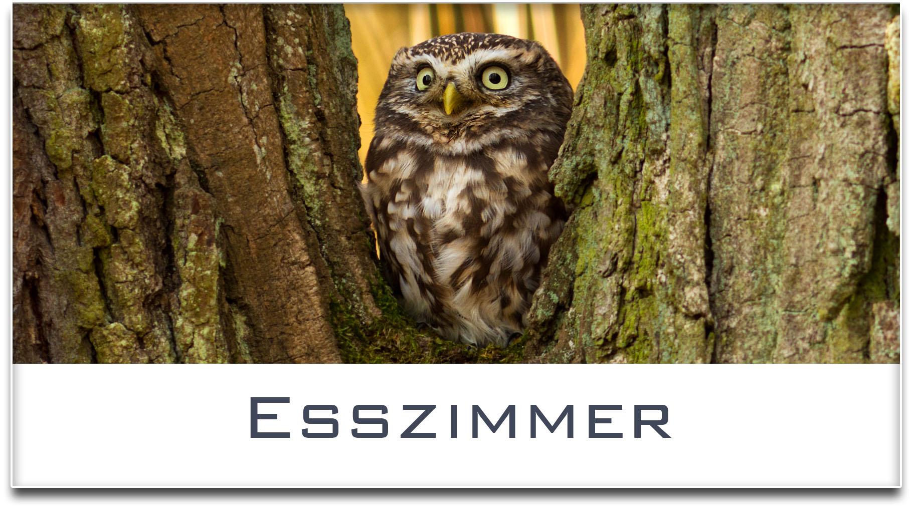 Türschild / Haustürschild / Eule / Esszimmer / Selbstklebend