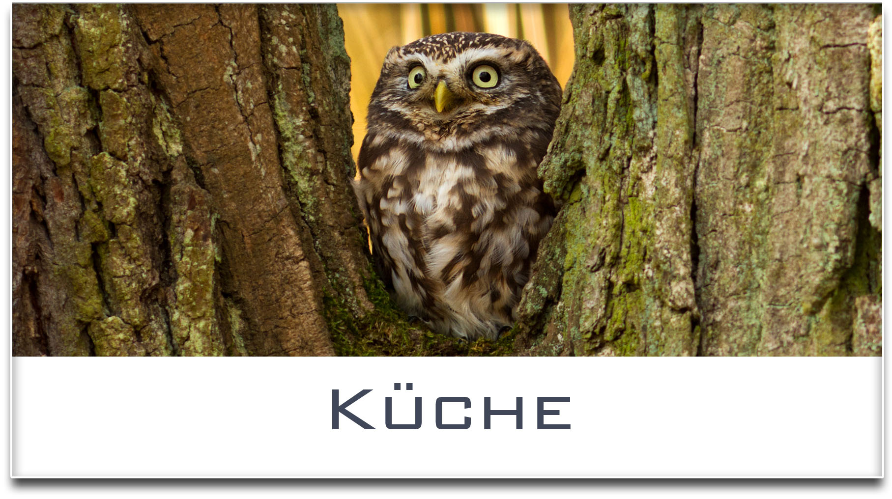 Türschild / Haustürschild / Eule / Küche / Selbstklebend