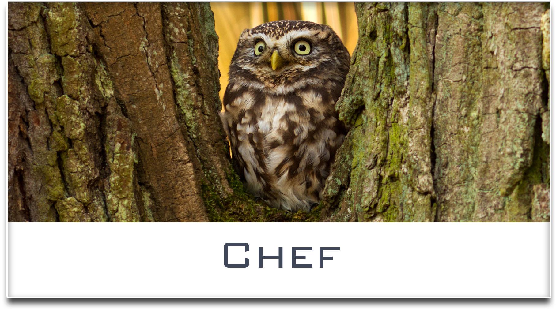 Türschild / Haustürschild / Eule / Chef / Selbstklebend