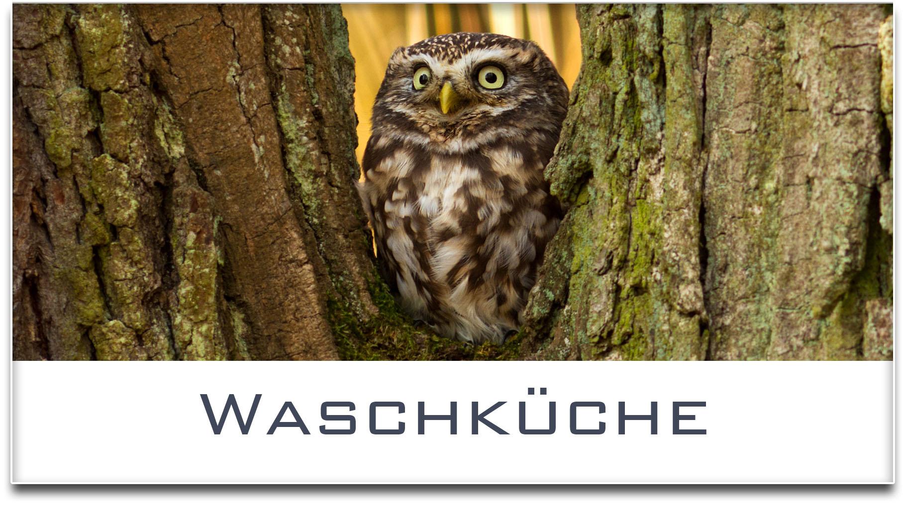 Türschild / Haustürschild / Eule / Waschküche / Selbstklebend
